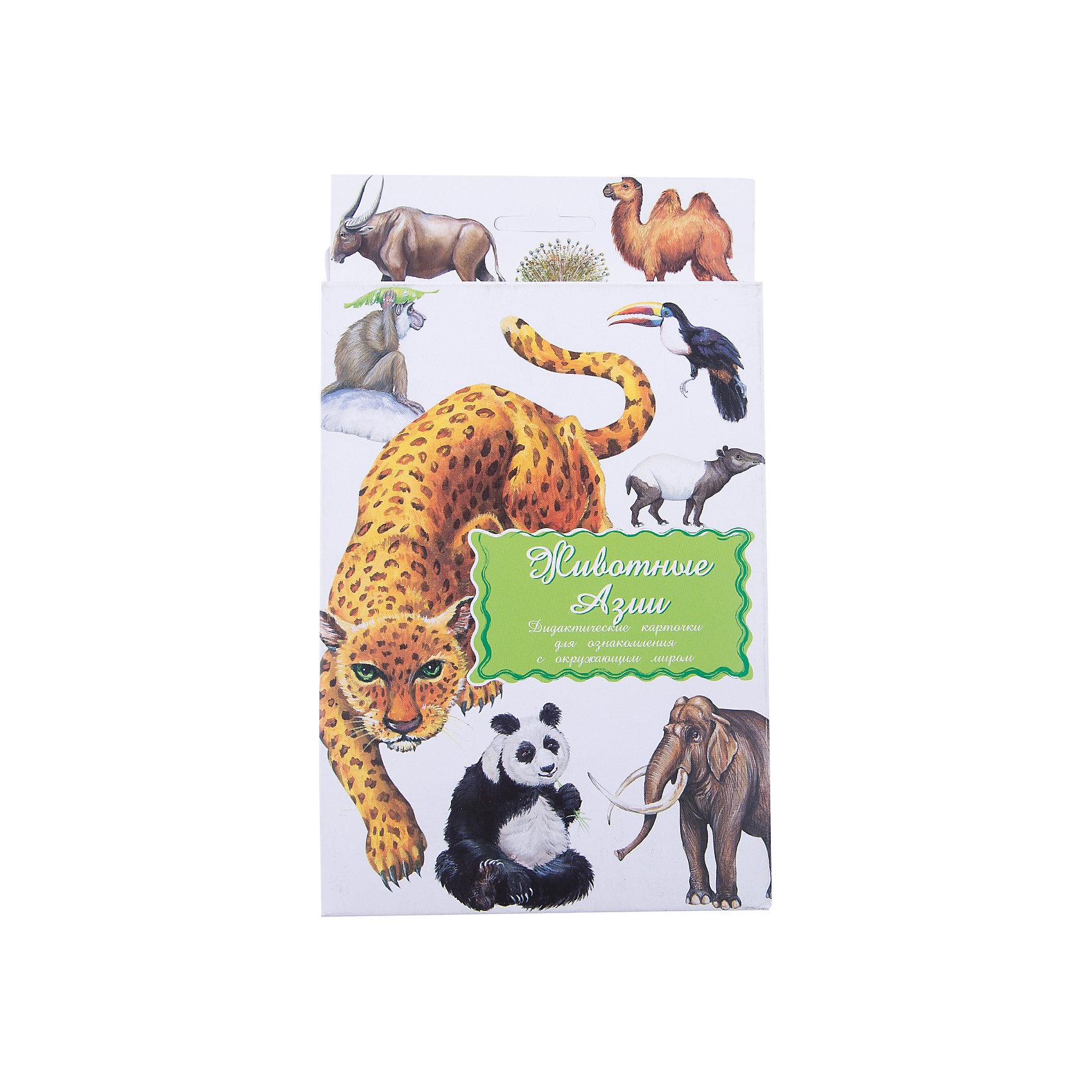 Маленький гений Дидактические карточки Животные Азии дидактические карточки животные азии