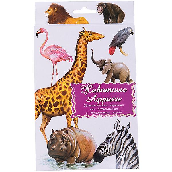 Дидактические карточки Животные АфрикиОбучающие карточки<br>Тематические комплекты дидактических карточек помогут познакомить ребенка с окружающим миром, развить речевые умения, научить сравнивать, классифицировать, обобщать. Карточки рекомендуются родителям для познавательных игр с детьми и занятий  по методике Г.Домана.  Могут использоваться в индивидуальной и групповой работе логопедами, психологами, воспитателями детских садов, учителями начальных классов.  В каждом комплекте 16 карточек, каждая из которых содержит интересную познавательную информацию об изображенном на ней предмете.<br>Ширина мм: 150; Глубина мм: 90; Высота мм: 90; Вес г: 200; Возраст от месяцев: 36; Возраст до месяцев: 2147483647; Пол: Унисекс; Возраст: Детский; SKU: 4802969;