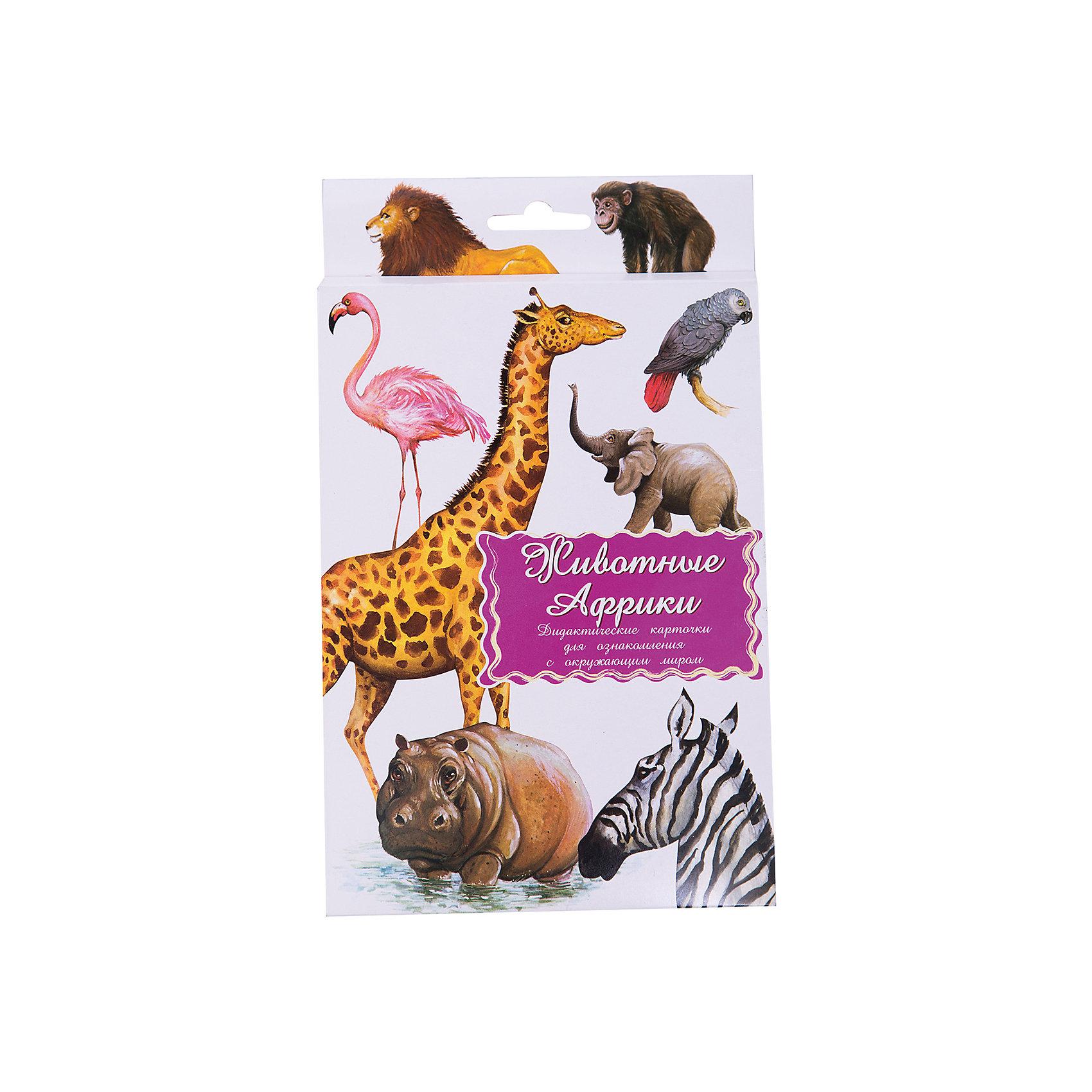 Дидактические карточки Животные АфрикиТематические комплекты дидактических карточек помогут познакомить ребенка с окружающим миром, развить речевые умения, научить сравнивать, классифицировать, обобщать. Карточки рекомендуются родителям для познавательных игр с детьми и занятий  по методике Г.Домана.  Могут использоваться в индивидуальной и групповой работе логопедами, психологами, воспитателями детских садов, учителями начальных классов.  В каждом комплекте 16 карточек, каждая из которых содержит интересную познавательную информацию об изображенном на ней предмете.<br><br>Ширина мм: 150<br>Глубина мм: 90<br>Высота мм: 90<br>Вес г: 200<br>Возраст от месяцев: 36<br>Возраст до месяцев: 2147483647<br>Пол: Унисекс<br>Возраст: Детский<br>SKU: 4802969
