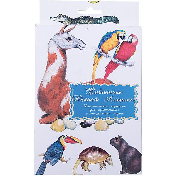 Дидактические карточки Животные Южной АмерикиОбучающие карточки<br>Тематические комплекты дидактических карточек помогут познакомить ребенка с окружающим миром, развить речевые умения, научить сравнивать, классифицировать, обобщать. Карточки рекомендуются родителям для познавательных игр с детьми и занятий  по методике Г.Домана.  Могут использоваться в индивидуальной и групповой работе логопедами, психологами, воспитателями детских садов, учителями начальных классов.  В каждом комплекте 16 карточек, каждая из которых содержит интересную познавательную информацию об изображенном на ней предмете.<br><br>Ширина мм: 150<br>Глубина мм: 90<br>Высота мм: 90<br>Вес г: 200<br>Возраст от месяцев: 36<br>Возраст до месяцев: 2147483647<br>Пол: Унисекс<br>Возраст: Детский<br>SKU: 4802970