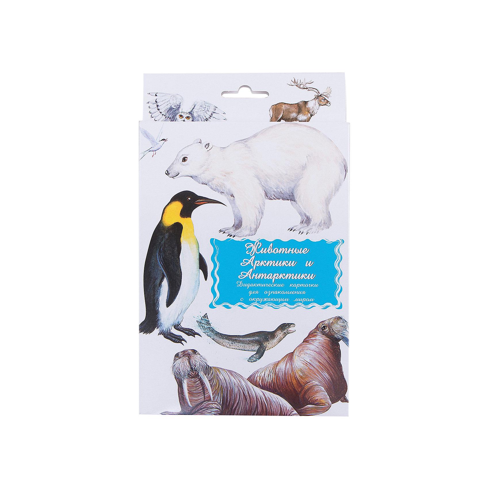 Дидактические карточки Животные Арктики и АнтарктикиТематические комплекты дидактических карточек помогут познакомить ребенка с окружающим миром, развить речевые умения, научить сравнивать, классифицировать, обобщать. Карточки рекомендуются родителям для познавательных игр с детьми и занятий  по методике Г.Домана.  Могут использоваться в индивидуальной и групповой работе логопедами, психологами, воспитателями детских садов, учителями начальных классов.  В каждом комплекте 16 карточек, каждая из которых содержит интересную познавательную информацию об изображенном на ней предмете.<br><br>Ширина мм: 150<br>Глубина мм: 90<br>Высота мм: 90<br>Вес г: 200<br>Возраст от месяцев: 36<br>Возраст до месяцев: 2147483647<br>Пол: Унисекс<br>Возраст: Детский<br>SKU: 4802972