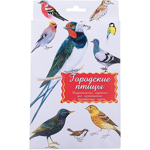 Дидактические карточки Городские птицыОбучающие карточки<br>Тематические комплекты дидактических карточек помогут познакомить ребенка с окружающим миром, развить речевые умения, научить сравнивать, классифицировать, обобщать. Карточки рекомендуются родителям для познавательных игр с детьми и занятий  по методике Г.Домана.  Могут использоваться в индивидуальной и групповой работе логопедами, психологами, воспитателями детских садов, учителями начальных классов.  В каждом комплекте 16 карточек, каждая из которых содержит интересную познавательную информацию об изображенном на ней предмете.<br>Ширина мм: 150; Глубина мм: 90; Высота мм: 90; Вес г: 200; Возраст от месяцев: 36; Возраст до месяцев: 2147483647; Пол: Унисекс; Возраст: Детский; SKU: 4802973;