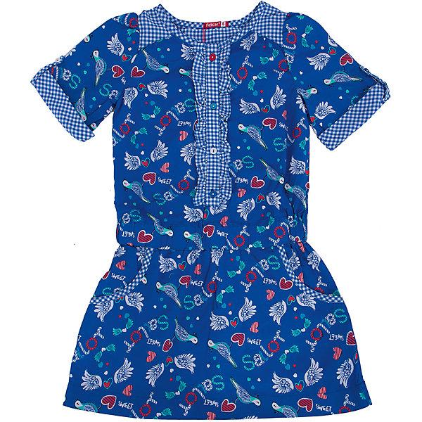 Платье для девочки PELICANПлатья и сарафаны<br>Удобное и модное платье для девочки смотрится очень нарядно. Оно поможет разнообразить гардероб ребенка, создать подходящий погоде ансамбль. Удобный крой и качественный материал обеспечат ребенку комфорт при ношении этих вещей. <br>Платье декорировано ярким принтом и оборками. Рукава короткие. Они и горловина обработаны клетчатой тканью. Материал платья состоит из дышащего натурального хлопка, гипоаллергенного, отлично подходящего для детской одежды. <br><br>Дополнительная информация:<br><br>материал: 100% хлопок;<br>цвет: синий;<br>карманы;<br>декорировано оборками и принтом.<br><br>Платье для девочки от бренда PELICAN (Пеликан) можно купить в нашем магазине.<br><br>Ширина мм: 236<br>Глубина мм: 16<br>Высота мм: 184<br>Вес г: 177<br>Цвет: синий<br>Возраст от месяцев: 60<br>Возраст до месяцев: 72<br>Пол: Женский<br>Возраст: Детский<br>Размер: 116,98,104,110<br>SKU: 4805164