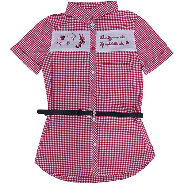 Блузка для девочки PELICANБлузки и рубашки<br>Модная удобная блузка для девочки поможет разнообразить гардероб ребенка, создать легкий подходящий погоде ансамбль. Удобный крой и качественный материал обеспечат ребенку комфорт при ношении этого изделия. <br>Блузка очень симпатично смотрится благодаря актуальному дизайну и удлиненному силуэту. Изделие украшено вставкой с принтом и стразами. Рукава - короткие. Материал - легкий, отлично подходит для лета, состоит из дышащего натурального хлопка. Очень приятен на ощупь, не вызывает аллергии. В комплекте  - стильный ремешок из искусственной кожи.<br><br>Дополнительная информация:<br><br>материал: 100% хлопок;<br>цвет: в клетку;<br>принт и стразы;<br>ремешок из искусственной кожи;<br>рукава короткие.<br><br>Блузку для девочки от бренда PELICAN (Пеликан) можно купить в нашем магазине.<br><br>Ширина мм: 186<br>Глубина мм: 87<br>Высота мм: 198<br>Вес г: 197<br>Цвет: розовый<br>Возраст от месяцев: 72<br>Возраст до месяцев: 84<br>Пол: Женский<br>Возраст: Детский<br>Размер: 146,128,134,122,140<br>SKU: 4805203