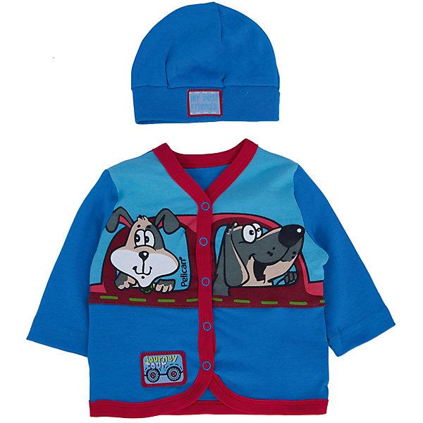 Комплект: кофточка и шапка  PELICAN