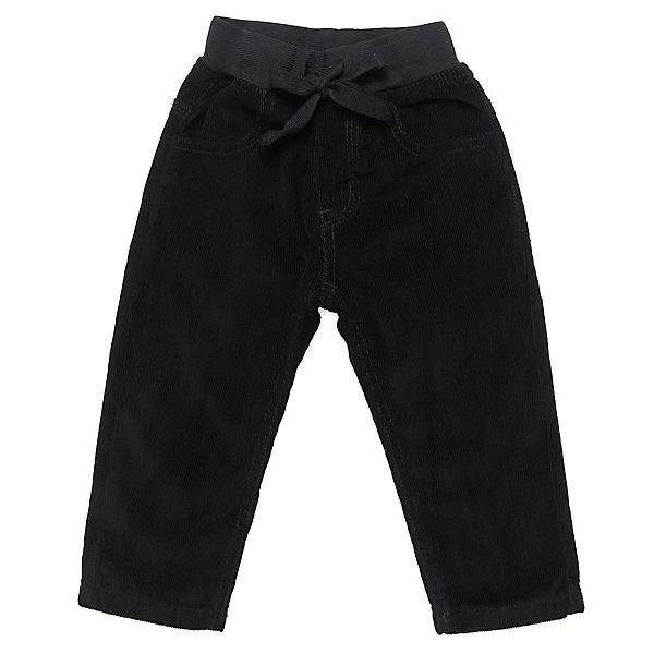 Брюки для мальчика Sweet BerryБрюки<br>Брюки для мальчика от известного бренда Sweet Berryсивол(10)Красивые брюки из мягкого вельвета на хлопковой трикотажной подкладке. Пояс на резинке. Спереди два функциональных кармана, сзади так же два кармана.<br>Состав:<br>100% хлопок<br>Ширина мм: 215; Глубина мм: 88; Высота мм: 191; Вес г: 336; Цвет: синий; Возраст от месяцев: 12; Возраст до месяцев: 15; Пол: Мужской; Возраст: Детский; Размер: 80,98,86,92; SKU: 4812754;