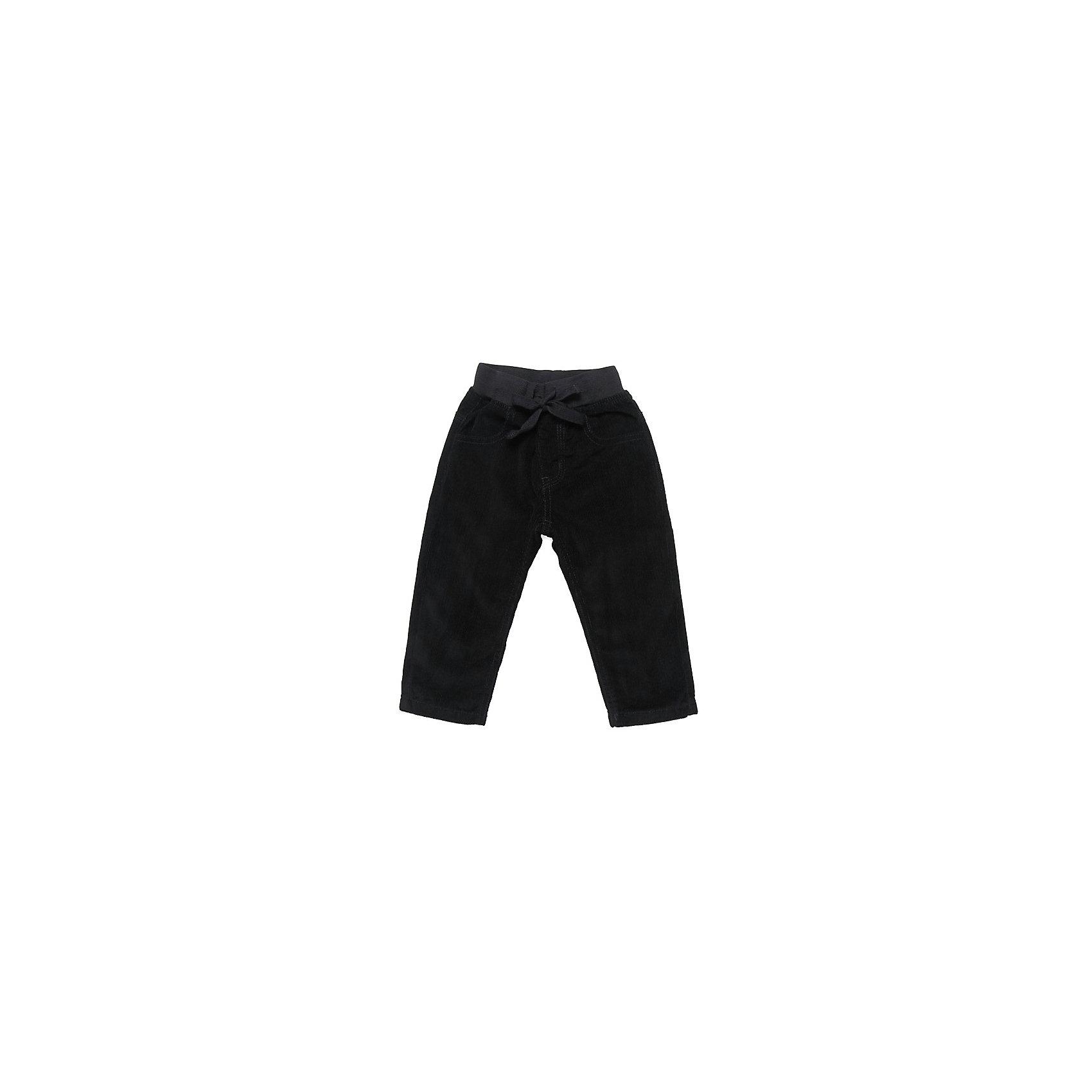 Брюки для мальчика Sweet BerryБрюки<br>Брюки для мальчика от известного бренда Sweet Berryсивол(10)Красивые брюки из мягкого вельвета на хлопковой трикотажной подкладке. Пояс на резинке. Спереди два функциональных кармана, сзади так же два кармана.<br>Состав:<br>100% хлопок<br><br>Ширина мм: 215<br>Глубина мм: 88<br>Высота мм: 191<br>Вес г: 336<br>Цвет: синий<br>Возраст от месяцев: 12<br>Возраст до месяцев: 15<br>Пол: Мужской<br>Возраст: Детский<br>Размер: 80,92,98,86<br>SKU: 4812754
