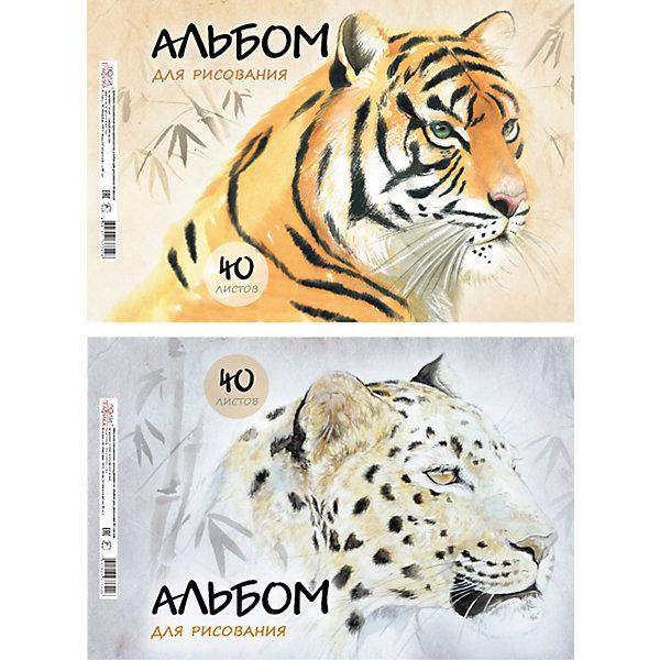 Альбом для рисования Wild Cats, А4, 40 л.Бумажная продукция<br><br>Ширина мм: 299; Глубина мм: 210; Высота мм: 7; Вес г: 350; Возраст от месяцев: 36; Возраст до месяцев: 2147483647; Пол: Унисекс; Возраст: Детский; SKU: 4833192;