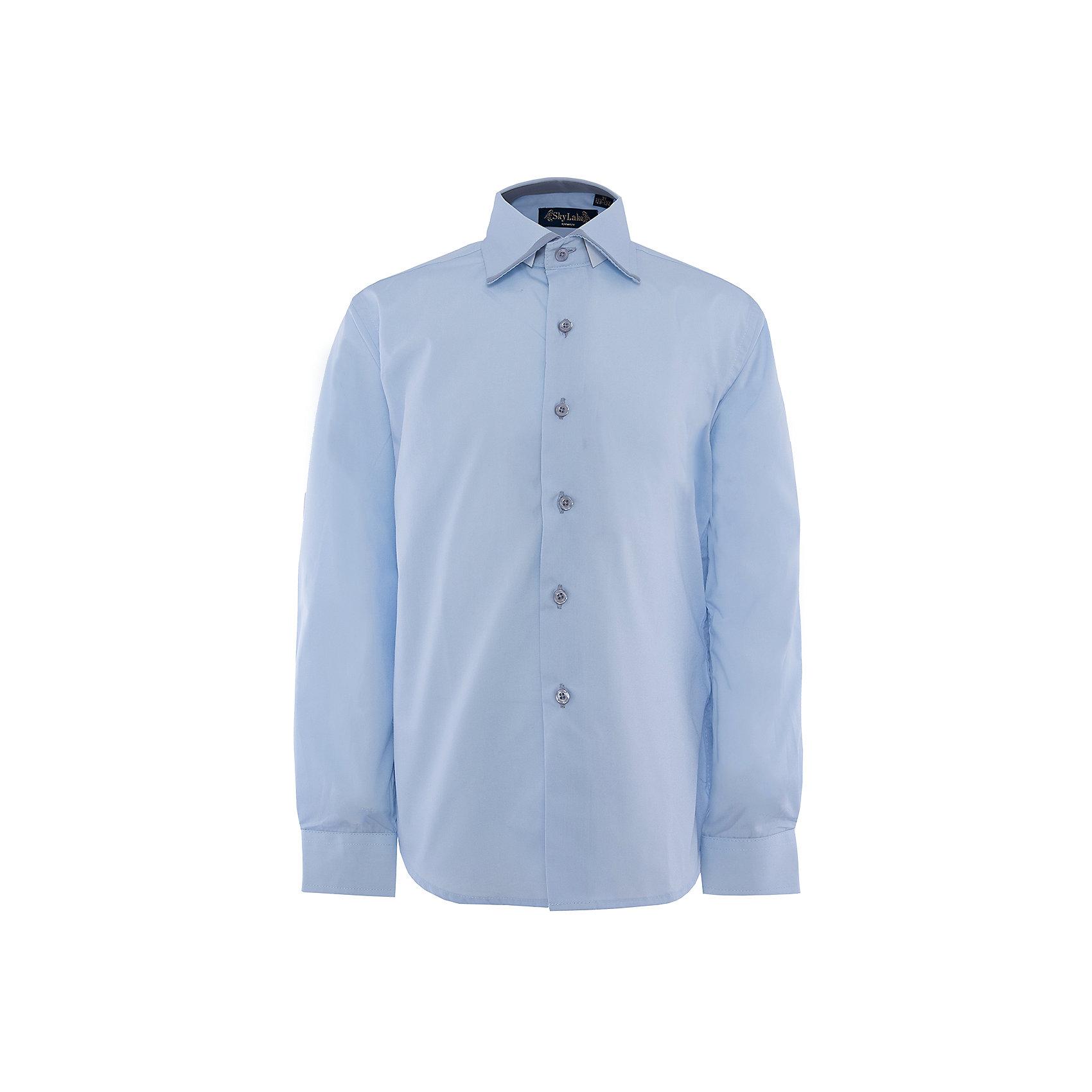 Рубашка для мальчика PREMIUM SkylakeРубашка для мальчика PREMIUM от известного бренда Skylake<br>Состав:<br>80%хлопок 20%п/э<br><br>Ширина мм: 174<br>Глубина мм: 10<br>Высота мм: 169<br>Вес г: 157<br>Цвет: голубой<br>Возраст от месяцев: 96<br>Возраст до месяцев: 108<br>Пол: Мужской<br>Возраст: Детский<br>Размер: 134,152,140,122,158,128,146<br>SKU: 4877767