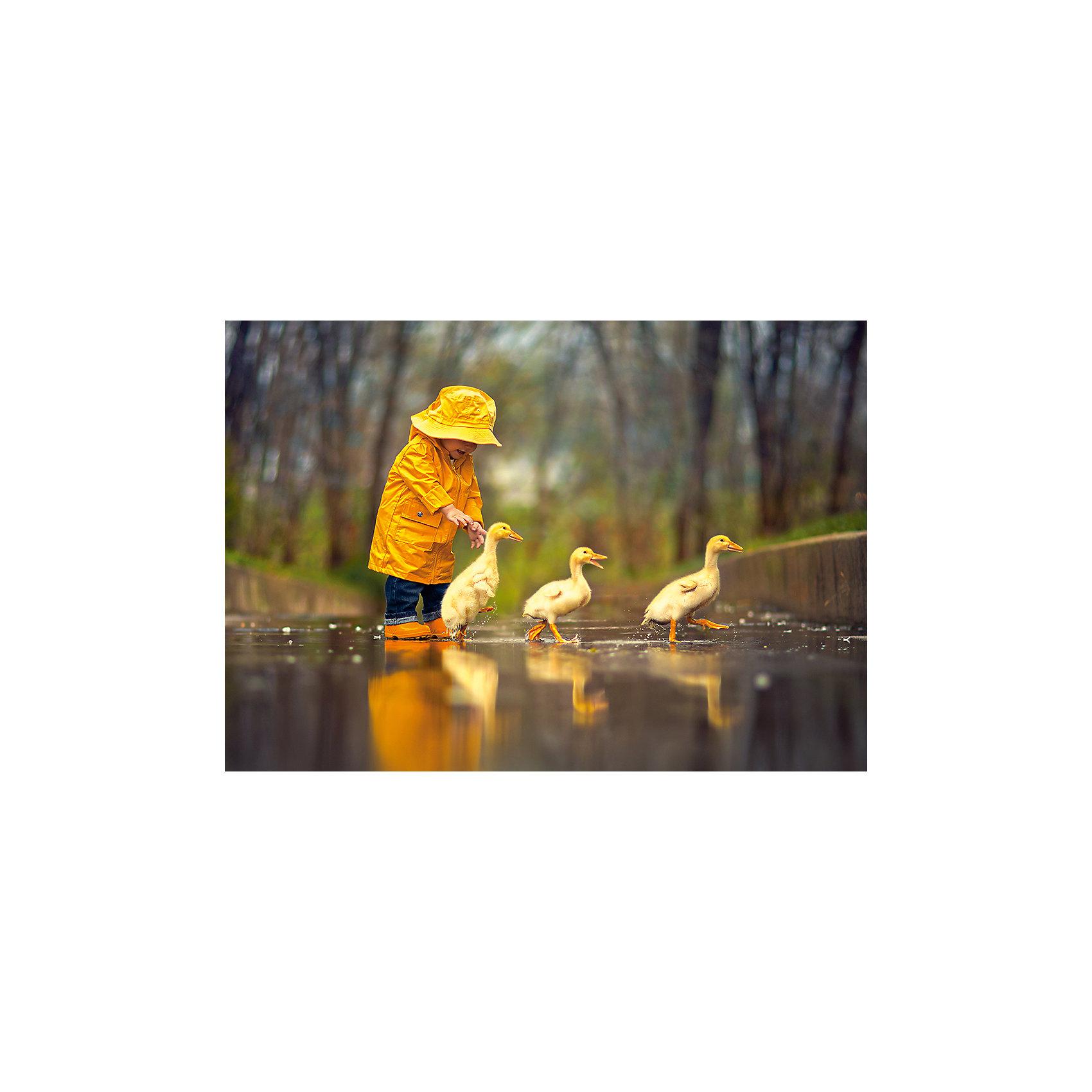 Castorland Пазл Друзья под дождем, 500 деталей, Castorland castorland 500 41670