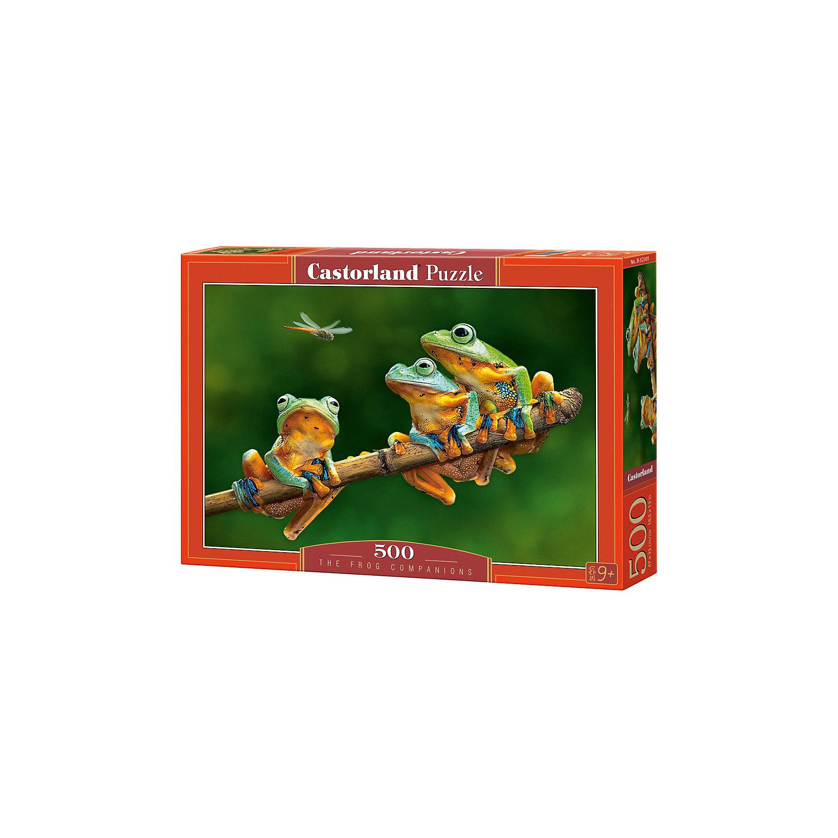 Castorland Пазл Лягушки, 500 деталей, Castorland castorland пазл красная шапочка castorland 20 деталей