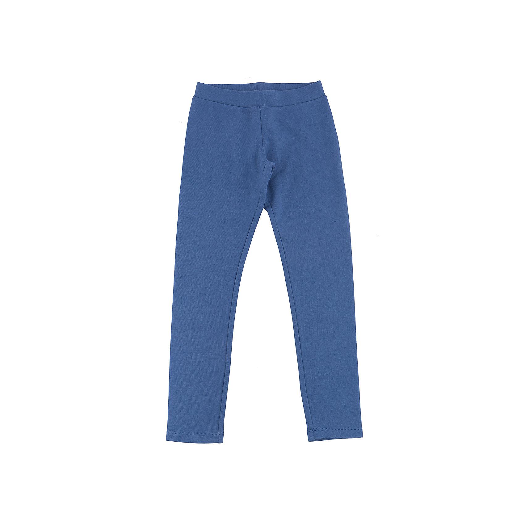 Леггинсы для девочки SELAЛеггинсы<br>Трикотажные плотные брюки для юной модницы.<br>Брюки прекрасны  в носке, не тянуться, садятся по фигуре и не сковывают движение. Такая модель брюк- прекрасный вариант для юной непоседы.<br><br>Дополнительная информация:<br><br>- Приталенный силуэт.<br>- Цвет: деним.<br>- Состав: 95% хлопок, 5% эластан.<br>- Бренд: SELA<br><br>Купить брюки для девочки от SELA можно в нашем магазине.<br><br>Ширина мм: 215<br>Глубина мм: 88<br>Высота мм: 191<br>Вес г: 336<br>Цвет: синий<br>Возраст от месяцев: 132<br>Возраст до месяцев: 144<br>Пол: Женский<br>Возраст: Детский<br>Размер: 152,116,122,128,134,140,146<br>SKU: 4883623