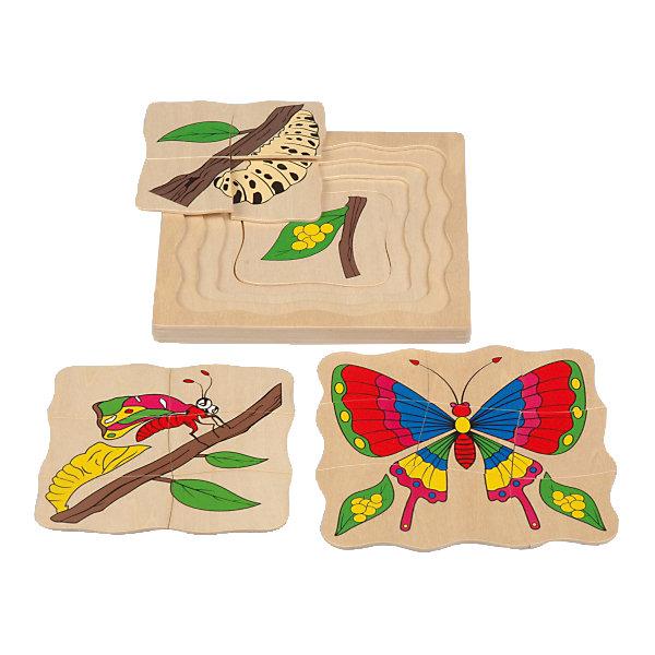 Многослойный пазл Бабочка, Мир деревянных игрушек3D пазлы<br>Бабочка – комплект пазлов с разным количеством деталей.<br>Пазл состоит из 4 разных картинок, наложенных друг на друга. Первая картинка бабочка с распахнутыми крыльями, состоящая из 9 элементов. Затем бабочка только вылезла из кокона из 6 деталей и гусеница из 4 деталей. И последняя картинка цельная, на ней изображен листик с личинками. Все это в удобной рамке. Сделан пазл из натурального, хорошо отшлифованного дерева. Красочный рисунок не поблекнет, даже при долгом пользовании. <br>Дополнительная информация:<br>- размер: 175х10х175<br>- вес: 300г<br>- материал: дерево <br>- возраст: от 3 лет<br><br>Бабочку можно купить в нашем интернет-магазине.<br>Ширина мм: 175; Глубина мм: 10; Высота мм: 175; Вес г: 300; Возраст от месяцев: 36; Возраст до месяцев: 2147483647; Пол: Унисекс; Возраст: Детский; SKU: 4895884;