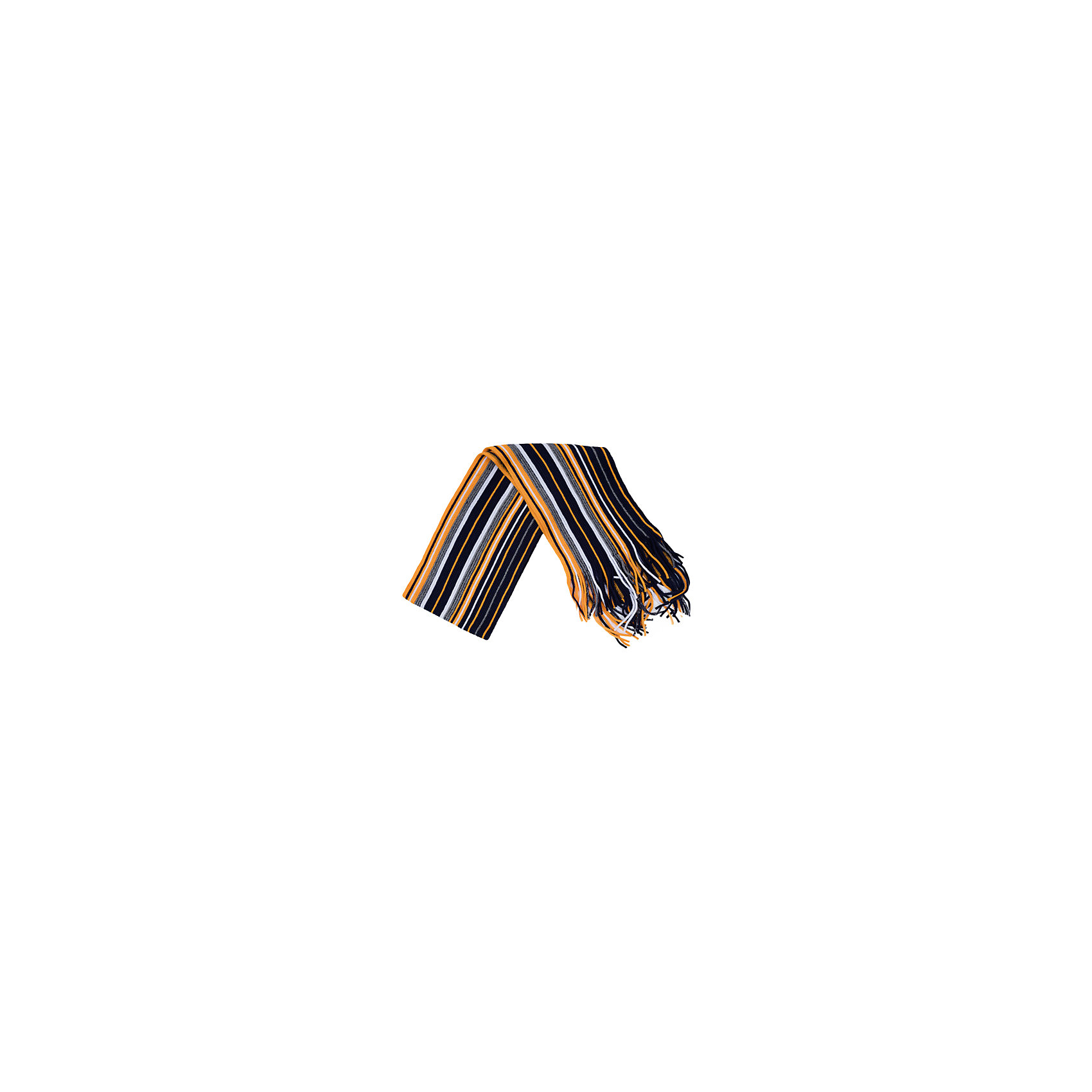 Шарф для мальчика PlayTodayШарфы, платки<br>Шарф для мальчика от известного бренда PlayToday.<br>Уютный шарф из вязаного трикотажа в цветную полоску. Надежно защитит от ветра и дополнит стильный образ.<br>Состав:<br>100% акрил<br><br>Ширина мм: 88<br>Глубина мм: 155<br>Высота мм: 26<br>Вес г: 106<br>Цвет: разноцветный<br>Возраст от месяцев: 36<br>Возраст до месяцев: 96<br>Пол: Мужской<br>Возраст: Детский<br>Размер: one size<br>SKU: 4896884