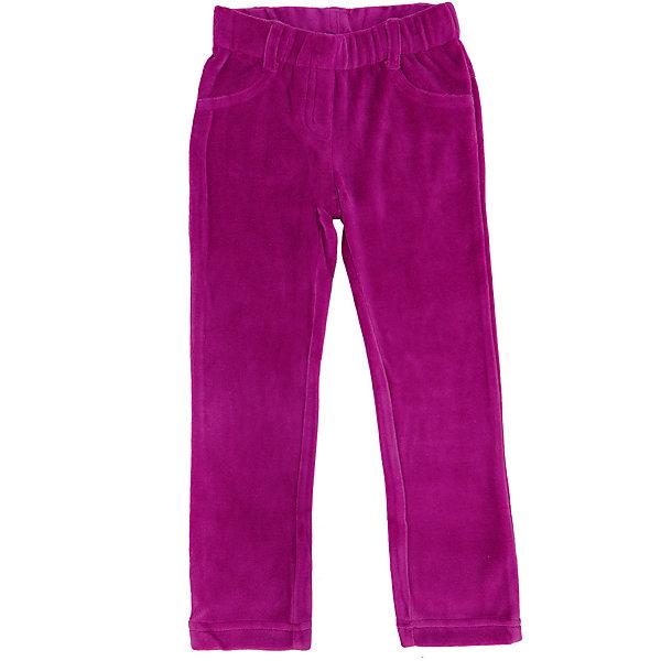 Брюки для девочки PlayTodayБрюки<br>Брюки для девочки от известного бренда PlayToday.<br>Уютные велюровые брюки яркого-розового цвета. Пояс на мягкой резинке, имитация застежки и карманов.<br>Состав:<br>75% хлопок, 25% полиэстер<br><br>Ширина мм: 215<br>Глубина мм: 88<br>Высота мм: 191<br>Вес г: 336<br>Цвет: розовый<br>Возраст от месяцев: 24<br>Возраст до месяцев: 36<br>Пол: Женский<br>Возраст: Детский<br>Размер: 98,116,110,128,104,122<br>SKU: 4897075