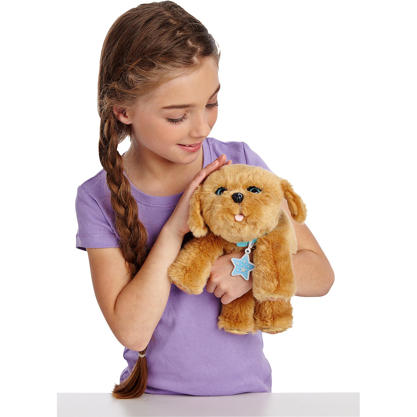 Щенок моей мечты, Little Live Pets, MooseЩенок моей мечты, Little Live Pets, Moose - интерактивная игрушка, которая, несомненно, станет лучшим другом ребенка. Она напоминает настоящего щенка и сможет приучить ребенка к заботе о животных в игровой форме.<br><br>Особенности:<br>- двигает головой<br>- закрывает и открывает глаза, если вы его погладите<br>- умеет радостно скулить и тявкать<br>- облизывает хозяина или хозяйку при нажатии на носик<br>- издает реалистичные звуки при кормлении из бутылочки<br>- посадите щенка и он попытает вас позвать, а затем закроет глазки и ляжет спать<br>- приятен на ощупь<br><br>Дополнительная информация:<br>Размер: 25 см<br>Батарейки: ААА - 4 шт. (входят в комплект)<br>Материал: пластик, плюш<br><br>Вы можете приобрести Щенка моей мечты, Little Live Pets, Moose в нашем интернет-магазине.<br><br>Ширина мм: 323<br>Глубина мм: 312<br>Высота мм: 185<br>Вес г: 933<br>Возраст от месяцев: 60<br>Возраст до месяцев: 84<br>Пол: Женский<br>Возраст: Детский<br>SKU: 4898516