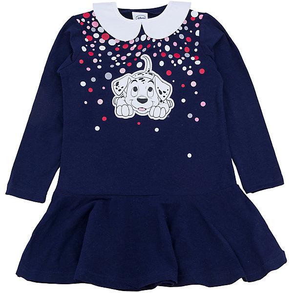 Платье для девочки PlayTodayОсенне-зимние платья и сарафаны<br>Платье для девочки от известного бренда PlayToday.<br>Мягкое хлопковое платье с длинными рукавами. Украшено лицензионным диснеевским принтом с забавным долматинцем.  Рукава на резинке, есть съемный белый воротничок.<br>Состав:<br>95% хлопок, 5% эластан<br><br>Ширина мм: 236<br>Глубина мм: 16<br>Высота мм: 184<br>Вес г: 177<br>Цвет: белый<br>Возраст от месяцев: 24<br>Возраст до месяцев: 36<br>Пол: Женский<br>Возраст: Детский<br>Размер: 98,104,122,116,110,128<br>SKU: 4903214