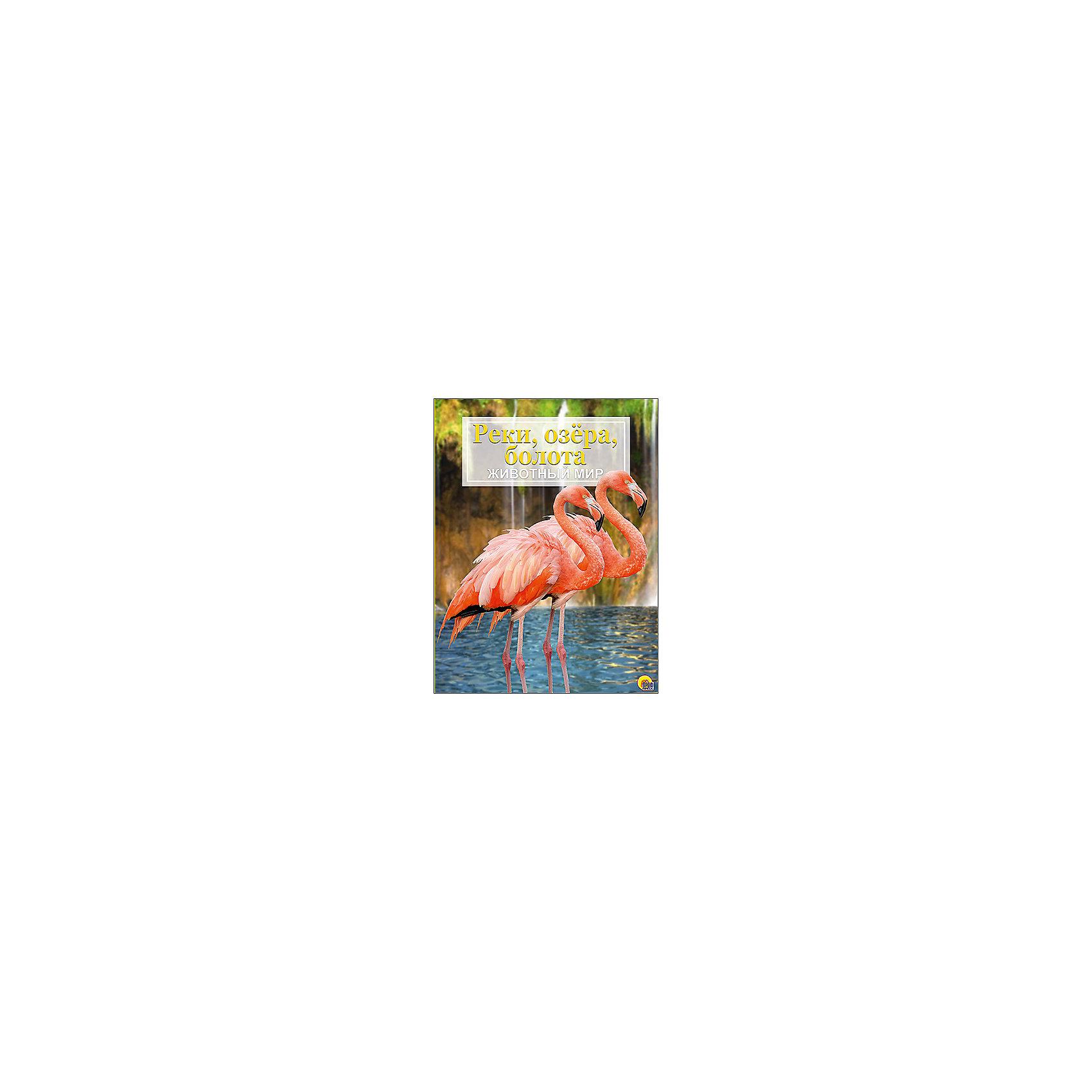 Проф-Пресс Энциклопедия Животный мир. Реки, озёра, болота кружка printio one piece ван пис