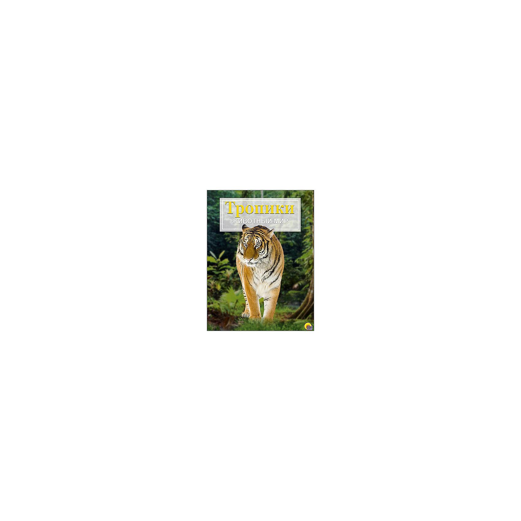 Энциклопедия Животный мир: ТропикиДетские энциклопедии<br>С познавательной энциклопедией Животный мир. Тропики ребенок сможет узнать о животных, которые обитают в тропиках. Натуралистические рисунки и карты-врезки помогут понять где обитает животное, которое заинтересовало ребенка. Для удобства изучения в книге предусмотрены алфавитный указатель, словарь, фотографии и карта климатических поясов. С этой книгой ребенку будет приятно и интересно узнавать окружающий мир!<br>Дополнительная информация:<br>Издательство: Проф-Пресс<br>Год выпуска: 2016<br>Обложка: твердый переплет<br>Иллюстрации: цветные<br>Количество страниц: 48<br>ISBN:978-5-378-21450-1<br>Размер: 16,5х1х23,5 см<br>Вес: 508 грамм<br>Энциклопедию Животный мир. Тропики вы можете купить в нашем интернет-магазине.<br><br>Ширина мм: 235<br>Глубина мм: 10<br>Высота мм: 165<br>Вес г: 508<br>Возраст от месяцев: 72<br>Возраст до месяцев: 36<br>Пол: Унисекс<br>Возраст: Детский<br>SKU: 4905937