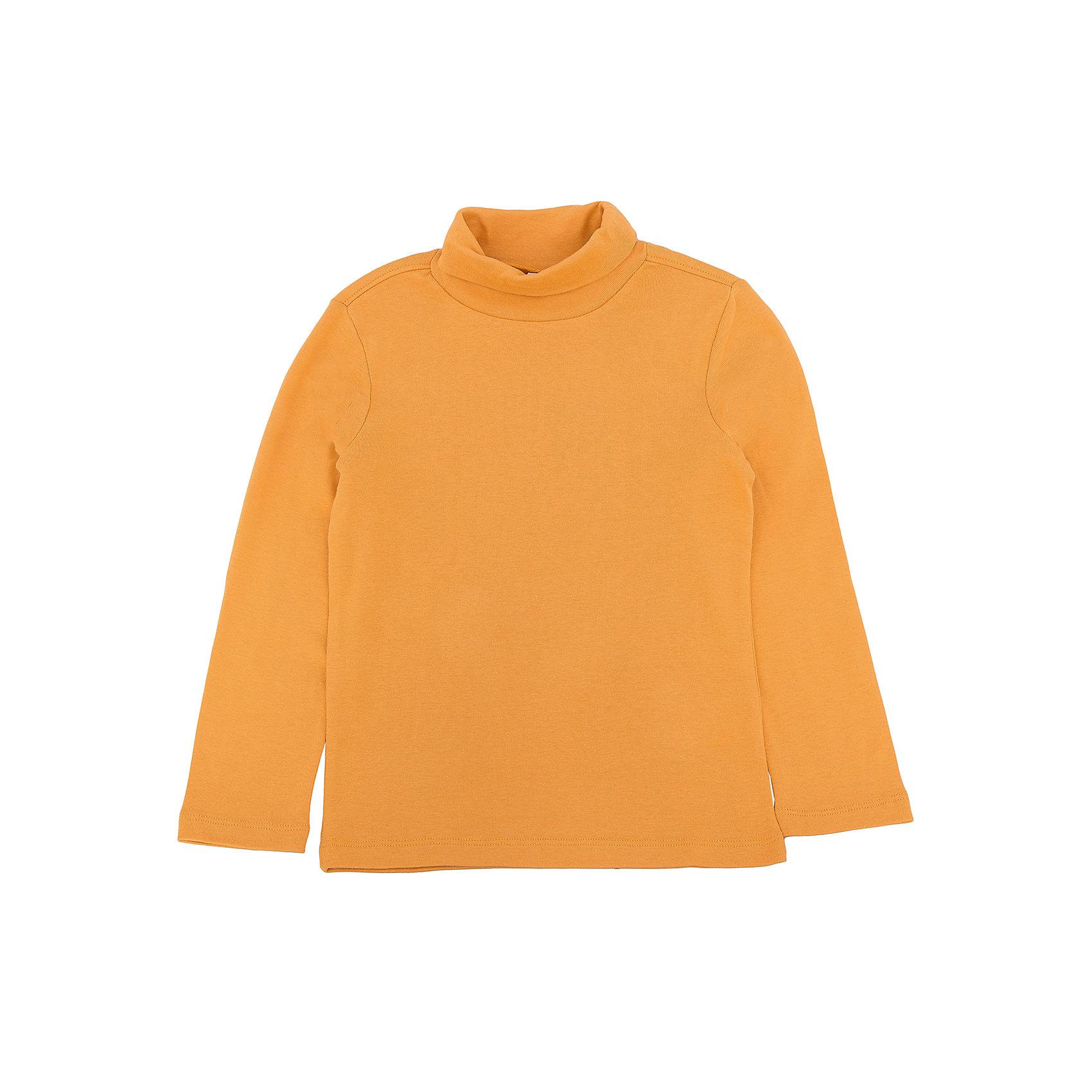 Водолазка для мальчикаВодолазка для мальчика из коллекции осень-зима 2016-2017 от известного бренда SELA. Удобный хлопковый джемпер на каждый день. Приятный ярко-желтый цвет в сочетании с классическим дизайном придет по вкусу вашему ребенку. Джемпер отлично подойдет как к брюкам, так и к джинсам.<br><br>Дополнительная информация:<br>- Рукав: длинный<br>- Силуэт: прямой<br>Состав: 100% хлопок <br><br>Джемпер для мальчиков Sela можно купить в нашем интернет-магазине.<br><br>Подробнее:<br>• Для детей в возрасте: от 2 до 6 лет<br>• Номер товара: 4913562<br>Страна производитель: Багладеш<br><br>Ширина мм: 190<br>Глубина мм: 74<br>Высота мм: 229<br>Вес г: 236<br>Цвет: желтый<br>Возраст от месяцев: 18<br>Возраст до месяцев: 24<br>Пол: Мужской<br>Возраст: Детский<br>Размер: 92,110,98,104,116<br>SKU: 4913561