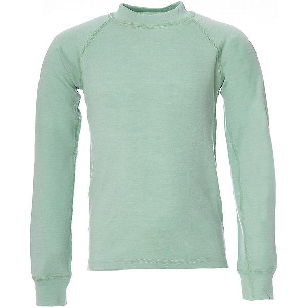 Футболка с длинны рукавом для мальчика JanusФлис и термобелье<br>Характеристики товара:<br><br>• цвет: зеленый<br>• состав ткани: 100% шерсть мериноса<br>• подкладка: нет<br>• сезон: зима<br>• длинные рукава<br>• страна бренда: Норвегия<br>• страна изготовитель: Норвегия<br><br>Такие футболки для детей можно носить как самостоятельную одежду или как термобелье. Шерстяная футболка для детей отлично подходят для ношения в холодную погоду. Детская футболка с длинным рукавом от норвежского бренда Janus сделана из натуральной шерсти мериноса - теплой и гипоаллергенной. <br><br>Футболку с длинным рукавом Janus (Янус) для мальчика можно купить в нашем интернет-магазине.<br>Ширина мм: 190; Глубина мм: 74; Высота мм: 229; Вес г: 236; Цвет: зеленый; Возраст от месяцев: 108; Возраст до месяцев: 120; Пол: Мужской; Возраст: Детский; Размер: 140,100,90,110,120,130; SKU: 4914055;