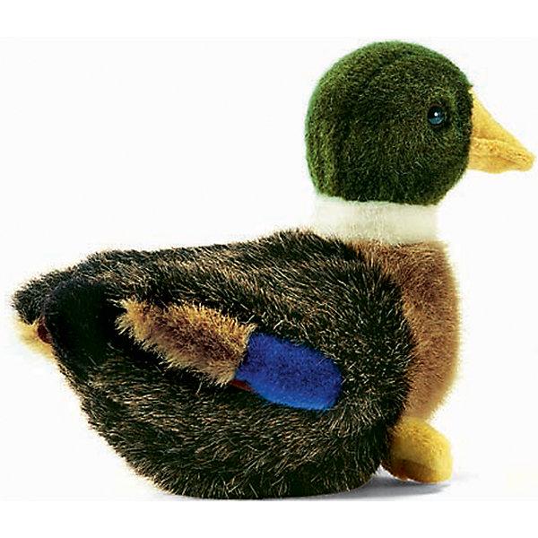 Утенок, 19 смМягкие игрушки животные<br>Утенок, 19 см – игрушка от знаменитого бренда Hansa, специализирующегося на выпуске мягких игрушек с высокой степенью натуралистичности. Внешний вид игрушечного утенка полностью соответствует реальному прототипу. Он выполнен из искусственного меха с ворсом средней длины меланжевого окраса. Туловище и голова у игрушки – темного цвета, грудка –коричневого и белая шейка. Использованные материалы обладают гипоаллергенными свойствами. Внутри игрушки имеется металлический каркас, позволяющий изменять положение. <br>Игрушка относится к серии Домашние птицы. <br>Мягкие игрушки от Hansa подходят для сюжетно-ролевых игр, для обучающих игр, направленных на знакомство с животным миром дикой природы. Кроме того, петуха можно использовать  в качестве интерьерной игрушки. Коллекция из нескольких игрушек позволяет создать свою домашнюю ферму, которая будет радовать вашего ребенка долгое время, так как ручная работа и качественные материалы гарантируют их долговечность и прочность.<br><br>Дополнительная информация:<br><br>- Вид игр: сюжетно-ролевые игры, коллекционирование, интерьерные игрушки<br>- Предназначение: для дома, для детских развивающих центров, для детских садов<br>- Материал: искусственный мех, наполнитель ? полиэфирное волокно<br>- Размер (ДхШхВ): 19*15*13 см<br>- Вес: 210 г<br>- Особенности ухода: сухая чистка при помощи пылесоса или щетки для одежды<br><br>Подробнее:<br><br>• Для детей в возрасте: от 3 лет <br>• Страна производитель: Филиппины<br>• Торговый бренд: Hansa<br><br>Утенка, 19 см можно купить в нашем интернет-магазине.<br>Ширина мм: 19; Глубина мм: 15; Высота мм: 13; Вес г: 210; Возраст от месяцев: 36; Возраст до месяцев: 2147483647; Пол: Унисекс; Возраст: Детский; SKU: 4927137;