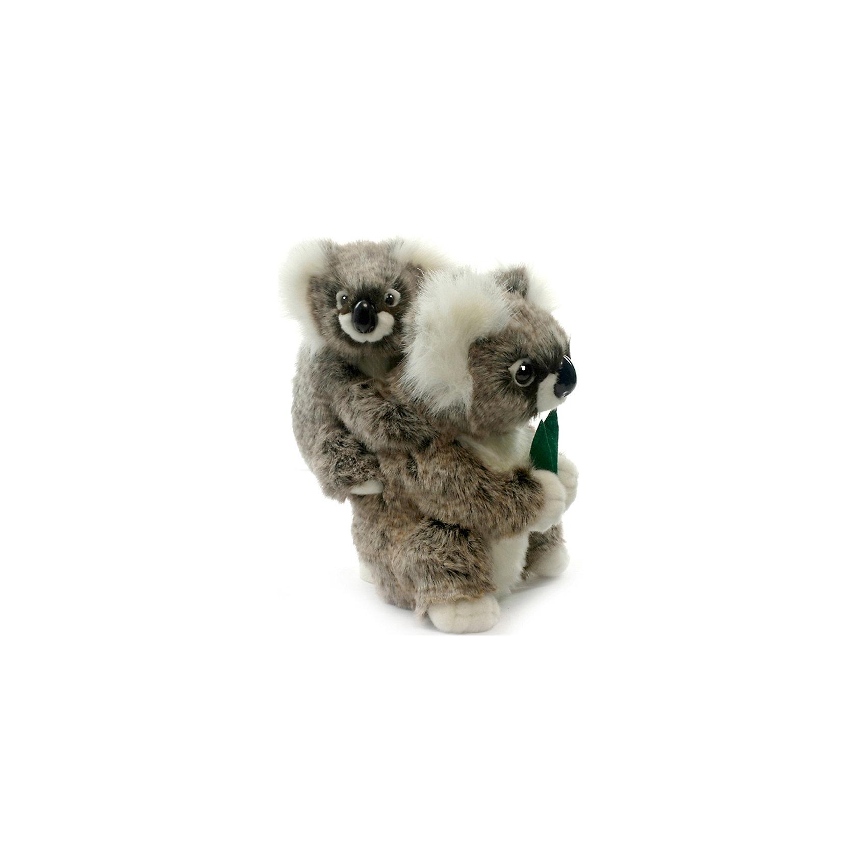 Коала с детенышем, 28 смМягкие игрушки животные<br>Коала с детенышем, 28 см – игрушка от знаменитого бренда Hansa, специализирующегося на выпуске мягких игрушек с высокой степенью натуралистичности. Внешний вид игрушки полностью соответствует своему реальному прототипу – коале. Она выполнена из искусственного меха с ворсом средней длины меланжевого окраса. На спине у мамы-коалы силит детеныш  детеныш. Использованные материалы обладают гипоаллергенными свойствами. Внутри игрушки имеется металлический каркас, позволяющий изменять положение. <br>Игрушка относится к серии Дикие животные. <br>Мягкие игрушки от Hansa подходят для сюжетно-ролевых игр, для обучающих игр, направленных на знакомство с животным миром дикой природы. Кроме того, их можно использовать в качестве интерьерных игрушек. Коллекция из нескольких игрушек позволяет создать свой домашний зоопарк, который будет радовать вашего ребенка долгое время, так как ручная работа и качественные материалы гарантируют их долговечность и прочность.<br><br>Дополнительная информация:<br><br>- Вид игр: сюжетно-ролевые игры, коллекционирование, интерьерные игрушки<br>- Предназначение: для дома, для детских развивающих центров, для детских садов<br>- Материал: искусственный мех, наполнитель ? полиэфирное волокно<br>- Размер (ДхШхВ): 18*28*17 см<br>- Вес: 840 г<br>- Особенности ухода: сухая чистка при помощи пылесоса или щетки для одежды<br><br>Подробнее:<br><br>• Для детей в возрасте: от 3 лет <br>• Страна производитель: Филиппины<br>• Торговый бренд: Hansa<br><br>Коалу с детенышем, 28 см можно купить в нашем интернет-магазине.<br><br>Ширина мм: 18<br>Глубина мм: 28<br>Высота мм: 17<br>Вес г: 1150<br>Возраст от месяцев: 36<br>Возраст до месяцев: 2147483647<br>Пол: Унисекс<br>Возраст: Детский<br>SKU: 4927141