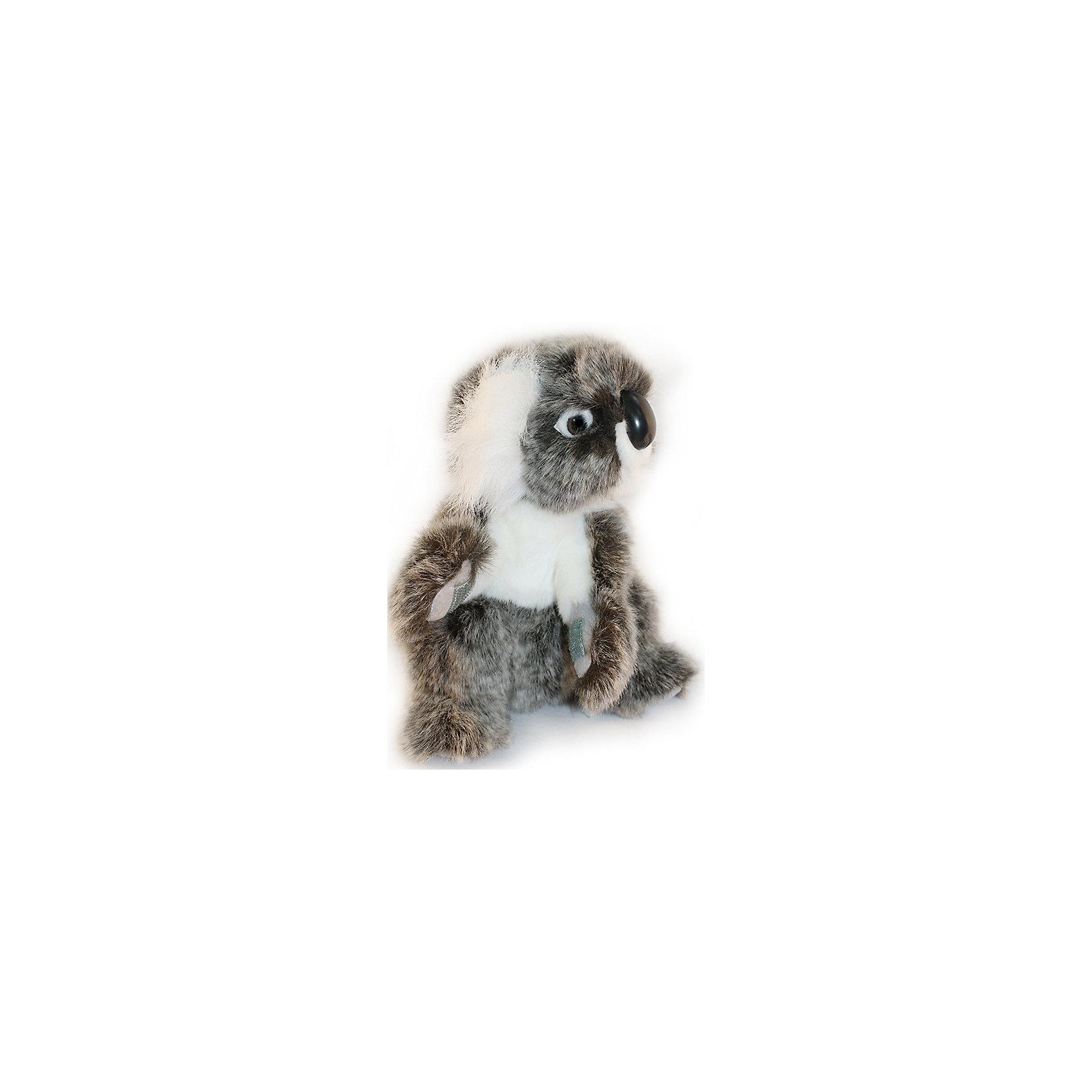 Коала, 21 смКоала, 21 см – игрушка от знаменитого бренда Hansa, специализирующегося на выпуске мягких игрушек с высокой степенью натуралистичности. Внешний вид игрушки полностью соответствует своему реальному прототипу – коале. Она выполнена из искусственного меха с ворсом средней длины меланжевого окраса. Использованные материалы обладают гипоаллергенными свойствами. Внутри игрушки имеется металлический каркас, позволяющий изменять положение. <br>Игрушка относится к серии Дикие животные. <br>Мягкие игрушки от Hansa подходят для сюжетно-ролевых игр, для обучающих игр, направленных на знакомство с животным миром дикой природы. Кроме того, их можно использовать в качестве интерьерных игрушек. Коллекция из нескольких игрушек позволяет создать свой домашний зоопарк, который будет радовать вашего ребенка долгое время, так как ручная работа и качественные материалы гарантируют их долговечность и прочность.<br><br>Дополнительная информация:<br><br>- Вид игр: сюжетно-ролевые игры, коллекционирование, интерьерные игрушки<br>- Предназначение: для дома, для детских развивающих центров, для детских садов<br>- Материал: искусственный мех, наполнитель ? полиэфирное волокно<br>- Размер (ДхШхВ): 16*21*15 см<br>- Вес: 270 г<br>- Особенности ухода: сухая чистка при помощи пылесоса или щетки для одежды<br><br>Подробнее:<br><br>• Для детей в возрасте: от 3 лет <br>• Страна производитель: Филиппины<br>• Торговый бренд: Hansa<br><br>Коалу, 21 см можно купить в нашем интернет-магазине.<br><br>Ширина мм: 16<br>Глубина мм: 21<br>Высота мм: 15<br>Вес г: 270<br>Возраст от месяцев: 36<br>Возраст до месяцев: 2147483647<br>Пол: Унисекс<br>Возраст: Детский<br>SKU: 4927143