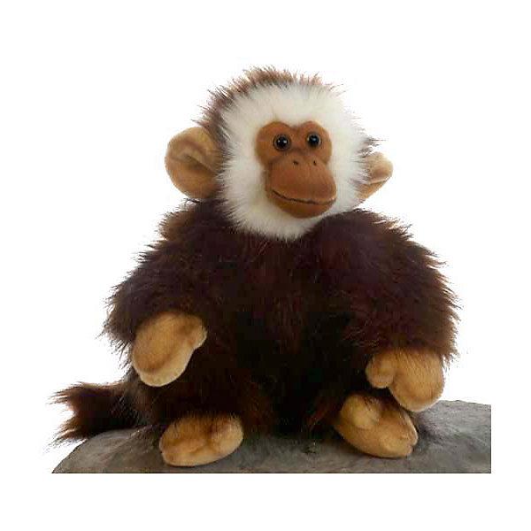 Обезьянка, 28 смМягкие игрушки животные<br>Обезьянка, 28 см – игрушка от знаменитого бренда Hansa, специализирующегося на выпуске мягких игрушек с высокой степенью натуралистичности. Внешний вид игрушки полностью соответствует своему реальному прототипу – приматам. Она выполнена из искусственного меха с ворсом разной длины. Окрас игрушки полностью повторяет окраску настоящего животного: темно-коричневая шерстка и белая мордочка и светлые лапки. Использованные материалы обладают гипоаллергенными свойствами. Внутри игрушки имеется металлический каркас, позволяющий изменять положение. <br>Игрушка относится к серии Дикие животные. <br>Мягкие игрушки от Hansa подходят для сюжетно-ролевых игр, для обучающих игр, направленных на знакомство с животным миром дикой природы. Кроме того, их можно использовать в качестве интерьерных игрушек. Коллекция из нескольких игрушек позволяет создать свой домашний зоопарк, который будет радовать вашего ребенка долгое время, так как ручная работа и качественные материалы гарантируют их долговечность и прочность.<br><br>Дополнительная информация:<br><br>- Вид игр: сюжетно-ролевые игры, коллекционирование, интерьерные игрушки<br>- Предназначение: для дома, для детских развивающих центров, для детских садов<br>- Материал: искусственный мех, наполнитель ? полиэфирное волокно<br>- Размер (ДхШхВ): 20*28*21 см<br>- Вес: 420 г<br>- Особенности ухода: сухая чистка при помощи пылесоса или щетки для одежды<br><br>Подробнее:<br><br>• Для детей в возрасте: от 3 лет <br>• Страна производитель: Филиппины<br>• Торговый бренд: Hansa<br><br>Обезьянку, 28 см можно купить в нашем интернет-магазине.<br><br>Ширина мм: 20<br>Глубина мм: 28<br>Высота мм: 21<br>Вес г: 420<br>Возраст от месяцев: 36<br>Возраст до месяцев: 2147483647<br>Пол: Унисекс<br>Возраст: Детский<br>SKU: 4927147