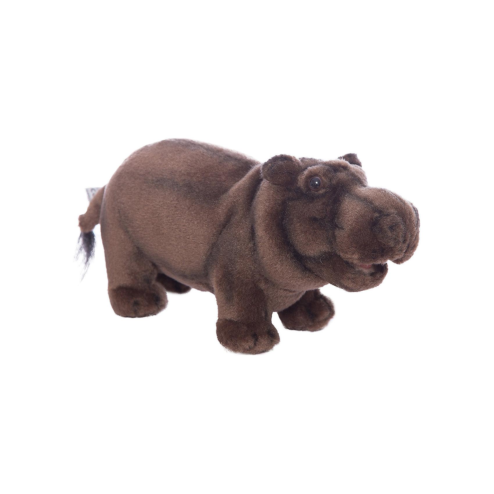 Бегемот, 30 смБегемот, 30 см – игрушка от знаменитого бренда Hansa, специализирующегося на выпуске мягких игрушек с высокой степенью натуралистичности. Внешний вид игрушечного бегемота полностью соответствует реальному прототипу. Игрушка выполнена в темно-коричневом цвете. Внутри имеется металлический каркас, который позволяет изменять положение. <br>Игрушка относится к серии Дикие животные. Выполнена из искусственного меха, обладающего гипоаллергенными свойствами.   <br>Мягкие игрушки от Hansa подходят для сюжетно-ролевых игр, для обучающих игр, направленных на знакомство с животным миром дикой природы. Кроме того, их можно использовать в качестве интерьерных игрушек. Коллекция из нескольких игрушек позволяет создать свой домашний зоопарк, который будет радовать вашего ребенка долгое время, так как ручная работа и качественные материалы гарантируют их долговечность и прочность.<br><br>Дополнительная информация:<br><br>- Вид игр: сюжетно-ролевые игры, коллекционирование, интерьерные игрушки<br>- Предназначение: для дома, для детских развивающих центров, для детских садов<br>- Материал: искусственный мех, наполнитель ? полиэфирное волокно<br>- Размер (ДхШхВ): 41*66*12 см<br>- Вес: 6 кг 600 г<br>- Особенности ухода: сухая чистка при помощи пылесоса или щетки для одежды<br><br>Подробнее:<br><br>• Для детей в возрасте: от 3 лет <br>• Страна производитель: Филиппины<br>• Торговый бренд: Hansa<br><br>Бегемота, 30 см можно купить в нашем интернет-магазине.<br><br>Ширина мм: 41<br>Глубина мм: 66<br>Высота мм: 12<br>Вес г: 6600<br>Возраст от месяцев: 36<br>Возраст до месяцев: 2147483647<br>Пол: Унисекс<br>Возраст: Детский<br>SKU: 4927148