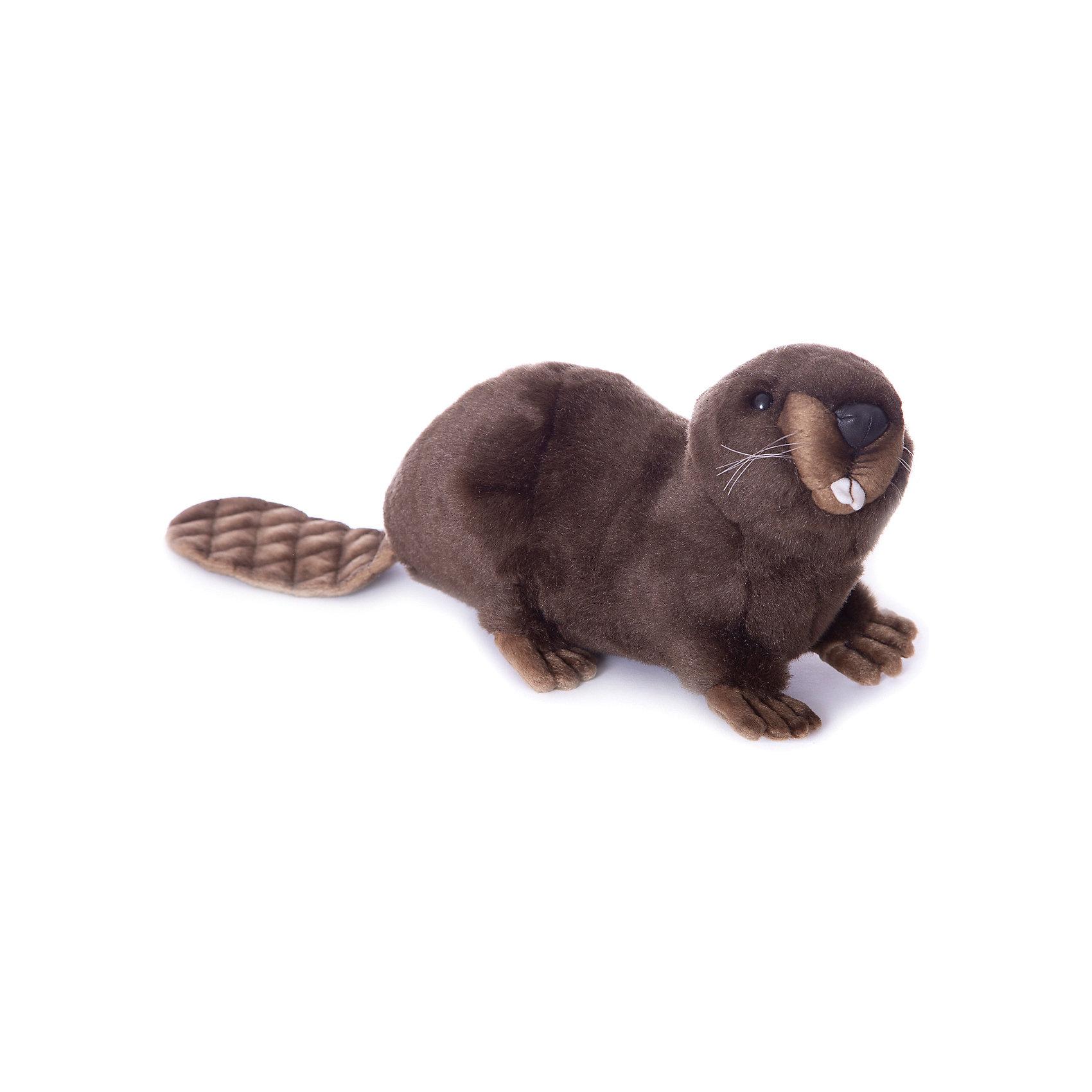 Бобёр, 32 см, HansaМягкие игрушки животные<br>Бобер, 32 см – игрушка от знаменитого бренда Hansa, специализирующегося на выпуске мягких игрушек с высокой степенью натуралистичности. Внешний вид игрушечного бобра полностью соответствует реальному прототипу – речному бобру. Он выполнен из искусственного меха коричневого цвета с ворсом средней длины; хвост, ушки и лапки – из короткого меха. Использованные материалы обладают гипоаллергенными свойствами. Внутри игрушки имеется металлический каркас, позволяющий изменять положение. <br>Игрушка относится к серии Дикие животные. <br>Мягкие игрушки от Hansa подходят для сюжетно-ролевых игр, для обучающих игр, направленных на знакомство с животным миром дикой природы. Кроме того, их можно использовать в качестве интерьерных игрушек. Коллекция из нескольких игрушек позволяет создать свой домашний зоопарк, который будет радовать вашего ребенка долгое время, так как ручная работа и качественные материалы гарантируют их долговечность и прочность.<br><br>Дополнительная информация:<br><br>- Вид игр: сюжетно-ролевые игры, коллекционирование, интерьерные игрушки<br>- Предназначение: для дома, для детских развивающих центров, для детских садов<br>- Материал: искусственный мех, наполнитель ? полиэфирное волокно<br>- Размер (ДхШхВ): 32*16*20 см<br>- Вес: 560 г<br>- Особенности ухода: сухая чистка при помощи пылесоса или щетки для одежды<br><br>Подробнее:<br><br>• Для детей в возрасте: от 3 лет <br>• Страна производитель: Филиппины<br>• Торговый бренд: Hansa<br><br>Бобра, 32 см можно купить в нашем интернет-магазине.<br><br>Ширина мм: 32<br>Глубина мм: 16<br>Высота мм: 20<br>Вес г: 560<br>Возраст от месяцев: 36<br>Возраст до месяцев: 2147483647<br>Пол: Унисекс<br>Возраст: Детский<br>SKU: 4927151