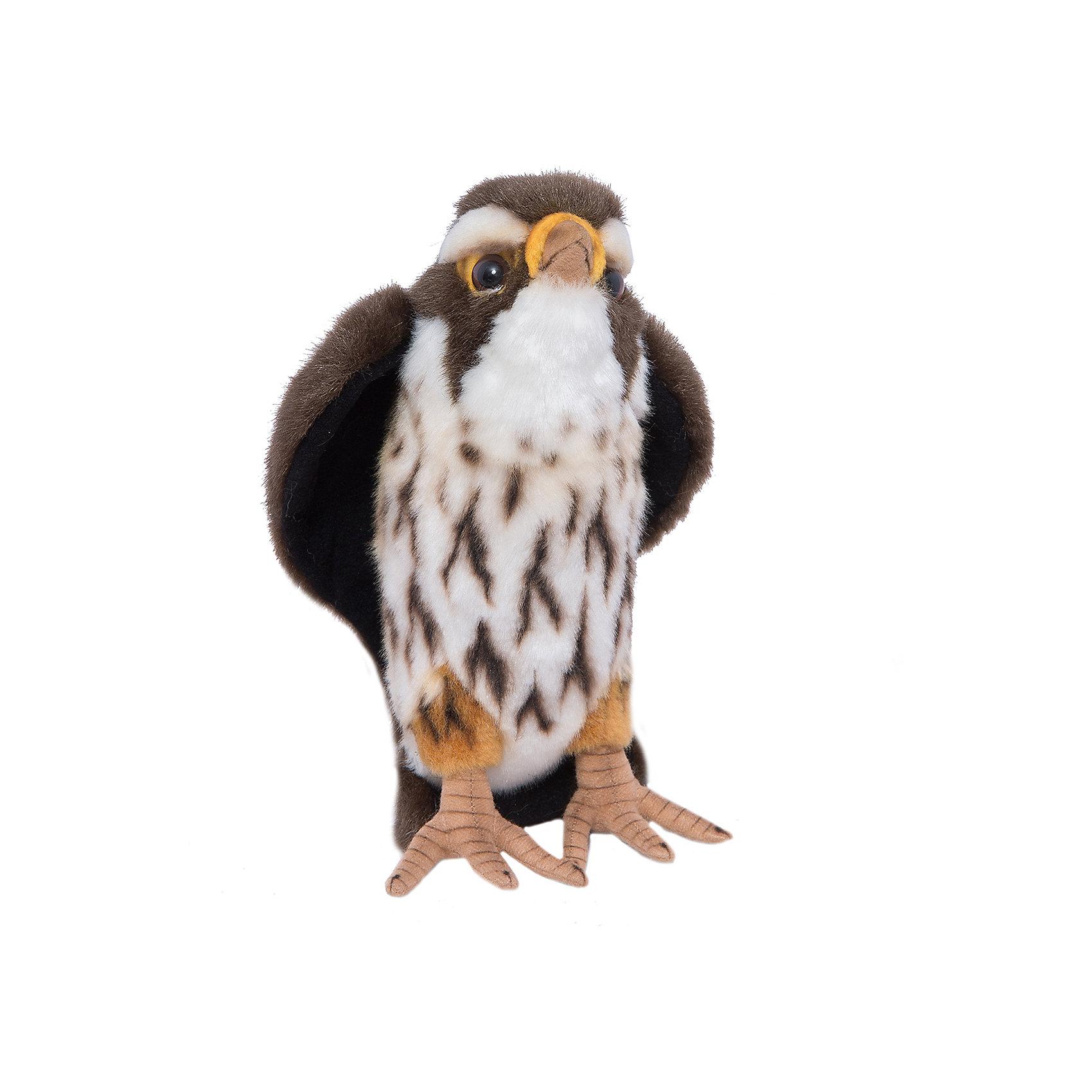 Сокол, 22 мМягкие игрушки животные<br>Сокол, 22 см – игрушка от знаменитого бренда Hansa, специализирующегося на выпуске мягких игрушек с высокой степенью натуралистичности. Внешний вид игрушечного сокола полностью соответствует реальному прототипу. Игрушка выполнена из темно-коричневого меха с ворсом средней длины, который обладает гипоаллергенными свойствами. Внутри имеется металлический каркас, который позволяет изменять положение. Игрушка относится к серии Хищные птицы. <br>Мягкие игрушки от Hansa подходят для сюжетно-ролевых игр или для обучающих игр. Кроме того, их можно использовать в качестве интерьерных игрушек. Игрушки от Hansa будут радовать вашего ребенка долгое время, так как ручная работа и качественные материалы гарантируют их долговечность и прочность.<br><br>Дополнительная информация:<br><br>- Вид игр: сюжетно-ролевые игры, коллекционирование, интерьерные игрушки<br>- Предназначение: для дома, для детских развивающих центров, для детских садов<br>- Материал: искусственный мех, наполнитель ? полиэфирное волокно<br>- Размер (ДхШхВ): 22*10*16 см<br>- Вес: 280 г<br>- Особенности ухода: сухая чистка при помощи пылесоса или щетки для одежды<br><br>Подробнее:<br><br>• Для детей в возрасте: от 3 лет <br>• Страна производитель: Филиппины<br>• Торговый бренд: Hansa<br><br>Сокола, 22 см можно купить в нашем интернет-магазине.<br><br>Ширина мм: 22<br>Глубина мм: 10<br>Высота мм: 16<br>Вес г: 280<br>Возраст от месяцев: 36<br>Возраст до месяцев: 2147483647<br>Пол: Унисекс<br>Возраст: Детский<br>SKU: 4927152