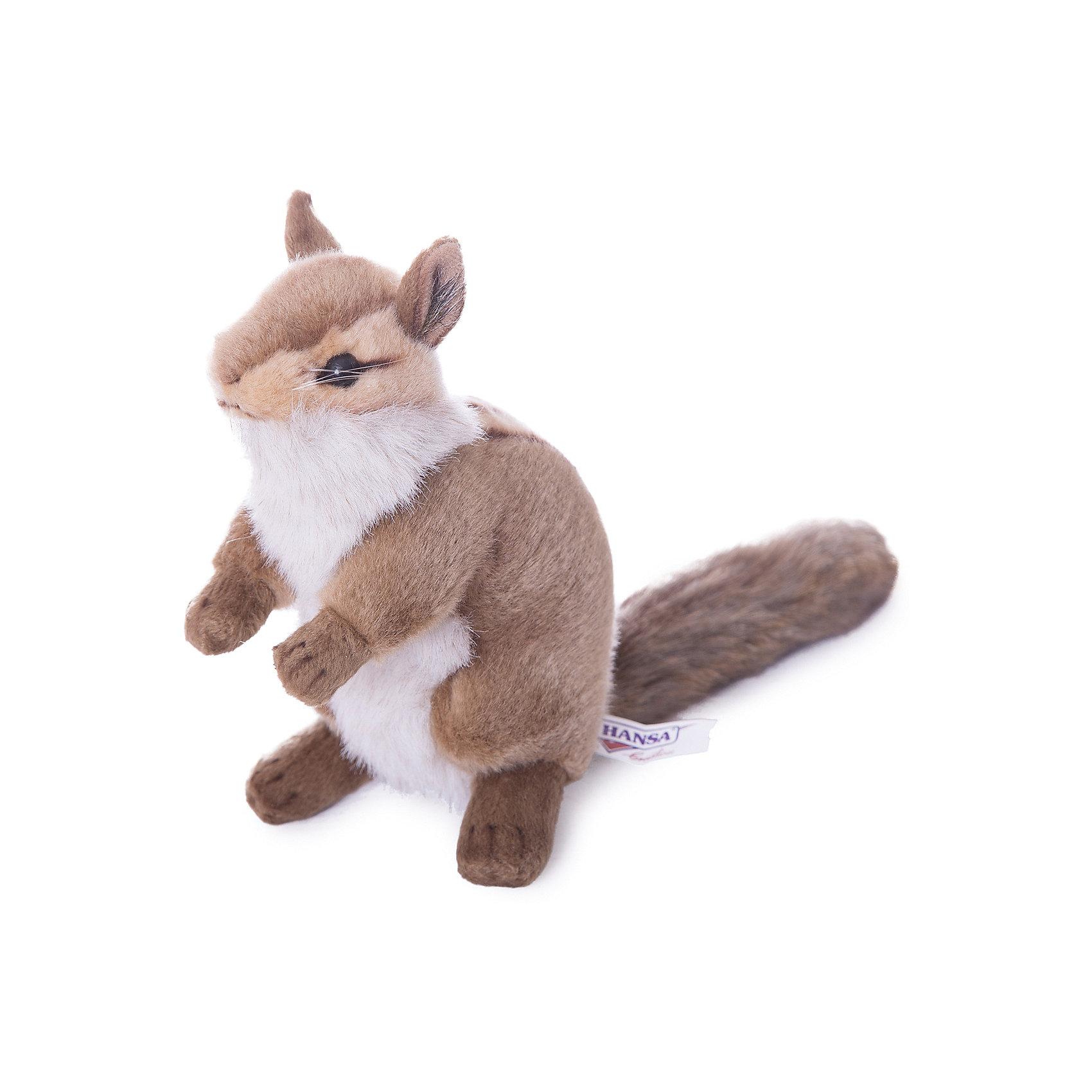 Бурундук, 16 смБурундук, 16 см – игрушка от знаменитого бренда Hansa, специализирующегося на выпуске мягких игрушек с высокой степенью натуралистичности. Внешний вид игрушечного бурундука полностью соответствует реальному прототипу. Он выполнен из искусственного меха меланжевого окраса с ворсом средней длины; хвост и лапки – из короткого меха. Грудка у бурундука полосатая, а грудка – белая. Использованные материалы обладают гипоаллергенными свойствами. Внутри игрушки имеется металлический каркас, позволяющий изменять положение. <br>Игрушка относится к серии Дикие животные. <br>Мягкие игрушки от Hansa подходят для сюжетно-ролевых игр, для обучающих игр, направленных на знакомство с животным миром дикой природы. Кроме того, их можно использовать в качестве интерьерных игрушек. Коллекция из нескольких игрушек позволяет создать свой домашний зоопарк, который будет радовать вашего ребенка долгое время, так как ручная работа и качественные материалы гарантируют их долговечность и прочность.<br><br>Дополнительная информация:<br><br>- Вид игр: сюжетно-ролевые игры, коллекционирование, интерьерные игрушки<br>- Предназначение: для дома, для детских развивающих центров, для детских садов<br>- Материал: искусственный мех, наполнитель ? полиэфирное волокно<br>- Размер (ДхШхВ): 14*16*10 см<br>- Вес: 170 г<br>- Особенности ухода: сухая чистка при помощи пылесоса или щетки для одежды<br><br>Подробнее:<br><br>• Для детей в возрасте: от 3 лет <br>• Страна производитель: Филиппины<br>• Торговый бренд: Hansa<br><br>Бурундука, 16 см можно купить в нашем интернет-магазине.<br><br>Ширина мм: 14<br>Глубина мм: 16<br>Высота мм: 10<br>Вес г: 170<br>Возраст от месяцев: 36<br>Возраст до месяцев: 2147483647<br>Пол: Унисекс<br>Возраст: Детский<br>SKU: 4927153