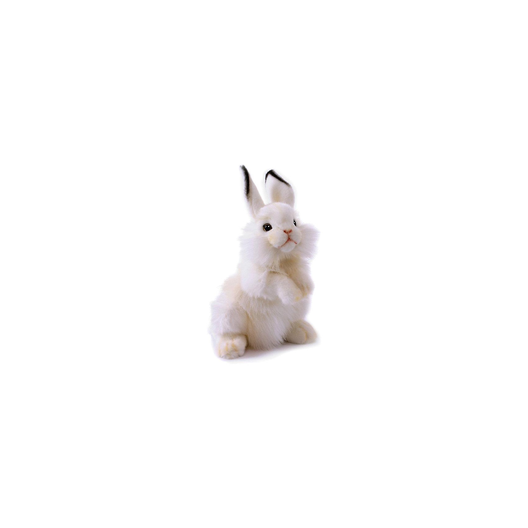 Белый кролик, 32 смЗайцы и кролики<br>Белый кролик, 32 см – игрушка от знаменитого бренда Hansa, специализирующегося на выпуске мягких игрушек с высокой степенью натуралистичности. Внешний вид игрушечного кролика полностью соответствует реальному прототипу – домашнему кролику. Он выполнен из искусственного меха белого цвета с разной длиной ворса: короткий на лапках, ушках и мордочке, длинный – на туловище. Использованные материалы обладают гипоаллергенными свойствами. Внутри игрушки имеется металлический каркас, позволяющий изменять положение. <br>Игрушка относится к серии Домашние животные. <br>Мягкие игрушки от Hansa подходят для сюжетно-ролевых игр, для обучающих игр, направленных на знакомство с миром живой природы. Кроме того, их можно использовать в качестве интерьерных игрушек. Коллекция из нескольких игрушек позволяет создать свою домашнюю ферму, которая будет радовать вашего ребенка долгое время, так как ручная работа и качественные материалы гарантируют их долговечность и прочность.<br><br>Дополнительная информация:<br><br>- Вид игр: сюжетно-ролевые игры, коллекционирование, интерьерные игрушки<br>- Предназначение: для дома, для детских развивающих центров, для детских садов<br>- Материал: искусственный мех, наполнитель ? полиэфирное волокно<br>- Размер (ДхШхВ): 21*32*19 см<br>- Вес: 450 г<br>- Особенности ухода: сухая чистка при помощи пылесоса или щетки для одежды<br><br>Подробнее:<br><br>• Для детей в возрасте: от 3 лет <br>• Страна производитель: Филиппины<br>• Торговый бренд: Hansa<br><br>Белого кролика, 32 см можно купить в нашем интернет-магазине.<br><br>Ширина мм: 21<br>Глубина мм: 32<br>Высота мм: 19<br>Вес г: 450<br>Возраст от месяцев: 36<br>Возраст до месяцев: 2147483647<br>Пол: Унисекс<br>Возраст: Детский<br>SKU: 4927156