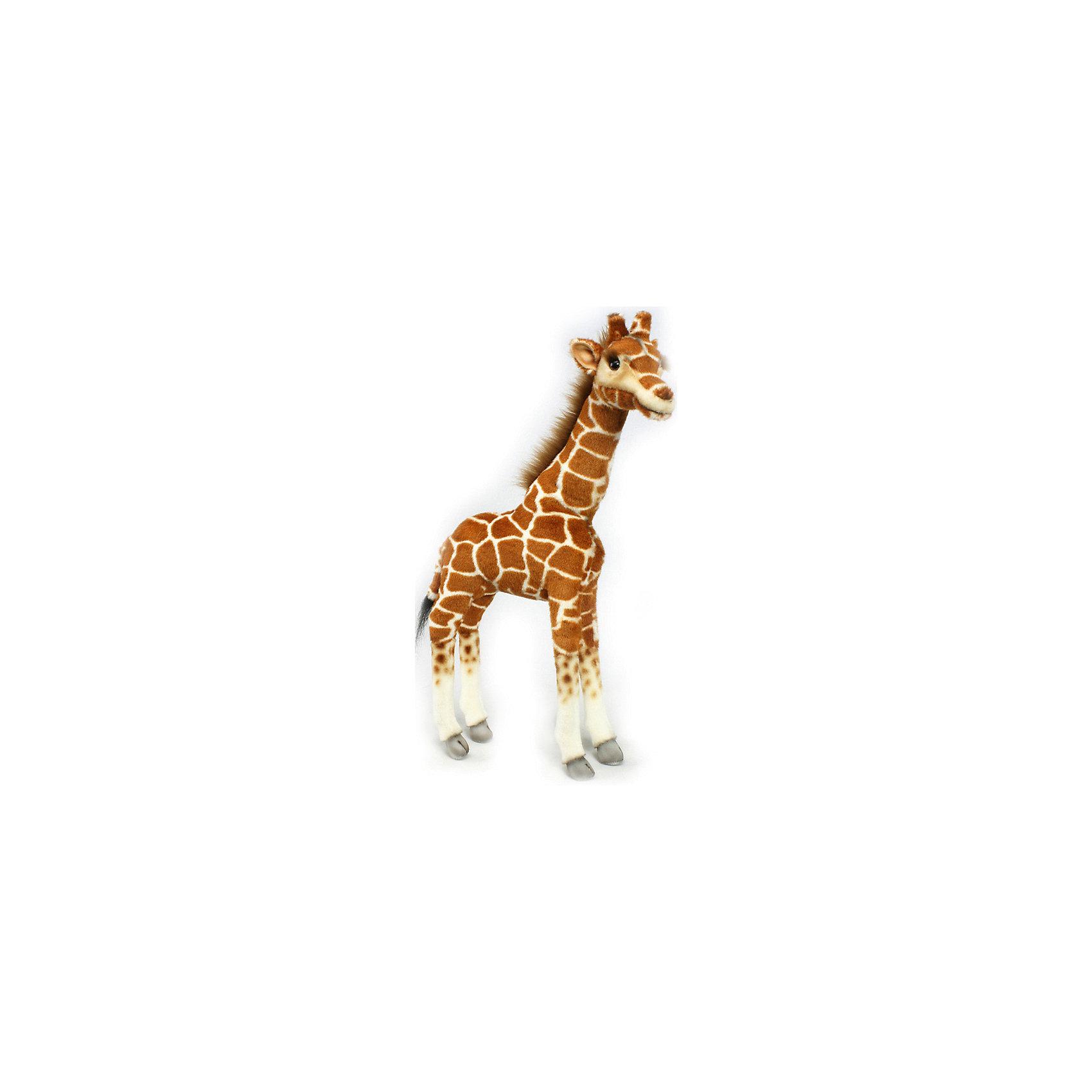 Жираф, 50 смЗвери и птицы<br>Жираф, 50 см – игрушка от знаменитого бренда Hansa, специализирующегося на выпуске мягких игрушек с высокой степенью натуралистичности. Внешний вид игрушечного жирафа полностью соответствует своему реальному прототипу. Он выполнен из искусственного меха с коротким ворсом характерного окраса. Использованные материалы обладают гипоаллергенными свойствами. Внутри игрушки имеется металлический каркас, позволяющий изменять положение. <br>Игрушка относится к серии Дикие животные. <br>Мягкие игрушки от Hansa подходят для сюжетно-ролевых игр, для обучающих игр, направленных на знакомство с животным миром дикой природы. Кроме того, их можно использовать в качестве интерьерных игрушек. Коллекция из нескольких игрушек позволяет создать свой домашний зоопарк, который будет радовать вашего ребенка долгое время, так как ручная работа и качественные материалы гарантируют их долговечность и прочность.<br><br>Дополнительная информация:<br><br>- Вид игр: сюжетно-ролевые игры, коллекционирование, интерьерные игрушки<br>- Предназначение: для дома, для детских развивающих центров, для детских садов<br>- Материал: искусственный мех, наполнитель ? полиэфирное волокно<br>- Размер (ДхШхВ): 35*50*10 см<br>- Вес: 780 г<br>- Особенности ухода: сухая чистка при помощи пылесоса или щетки для одежды<br><br>Подробнее:<br><br>• Для детей в возрасте: от 3 лет <br>• Страна производитель: Филиппины<br>• Торговый бренд: Hansa<br><br>Жирафа, 50 см можно купить в нашем интернет-магазине.<br><br>Ширина мм: 35<br>Глубина мм: 50<br>Высота мм: 10<br>Вес г: 780<br>Возраст от месяцев: 36<br>Возраст до месяцев: 2147483647<br>Пол: Унисекс<br>Возраст: Детский<br>SKU: 4927161