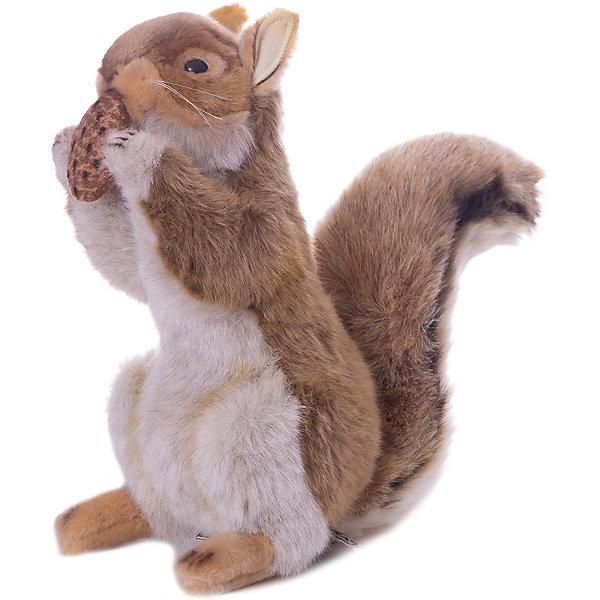 Рыжая белка  с орехом, 22смМягкие игрушки животные<br>Рыжая белка с орехом, 22 см – игрушка от знаменитого бренда Hansa, специализирующегося на выпуске мягких игрушек с высокой степенью натуралистичности. Внешний игрушки полностью соответствует реальному прототипу – белке обыкновенной. Игрушка выполнена из меха с ворсом разной длины, который обладает гипоаллергенными свойствами. У белки пушистый хвост, а в передних лапках она держит орех. Внутри имеется металлический каркас, который позволяет изменять положение. Игрушка относится к серии Дикие животные. <br>Мягкие игрушки от Hansa подходят для сюжетно-ролевых игр или для обучающих игр. Кроме того, их можно использовать в качестве интерьерных игрушек. Игрушки от Hansa будут радовать вашего ребенка долгое время, так как ручная работа и качественные материалы гарантируют их долговечность и прочность.<br><br>Дополнительная информация:<br><br>- Вид игр: сюжетно-ролевые игры, коллекционирование, интерьерные игрушки<br>- Предназначение: для дома, для детских развивающих центров, для детских садов<br>- Материал: искусственный мех, наполнитель ? полиэфирное волокно<br>- Размер (ДхШхВ): 17*22*13 см<br>- Вес: 495 г<br>- Особенности ухода: сухая чистка при помощи пылесоса или щетки для одежды<br><br>Подробнее:<br><br>• Для детей в возрасте: от 3 лет <br>• Страна производитель: Филиппины<br>• Торговый бренд: Hansa<br><br>Рыжую белку с орехом, 22 см можно купить в нашем интернет-магазине.<br><br>Ширина мм: 17<br>Глубина мм: 22<br>Высота мм: 13<br>Вес г: 495<br>Возраст от месяцев: 36<br>Возраст до месяцев: 2147483647<br>Пол: Унисекс<br>Возраст: Детский<br>SKU: 4927163