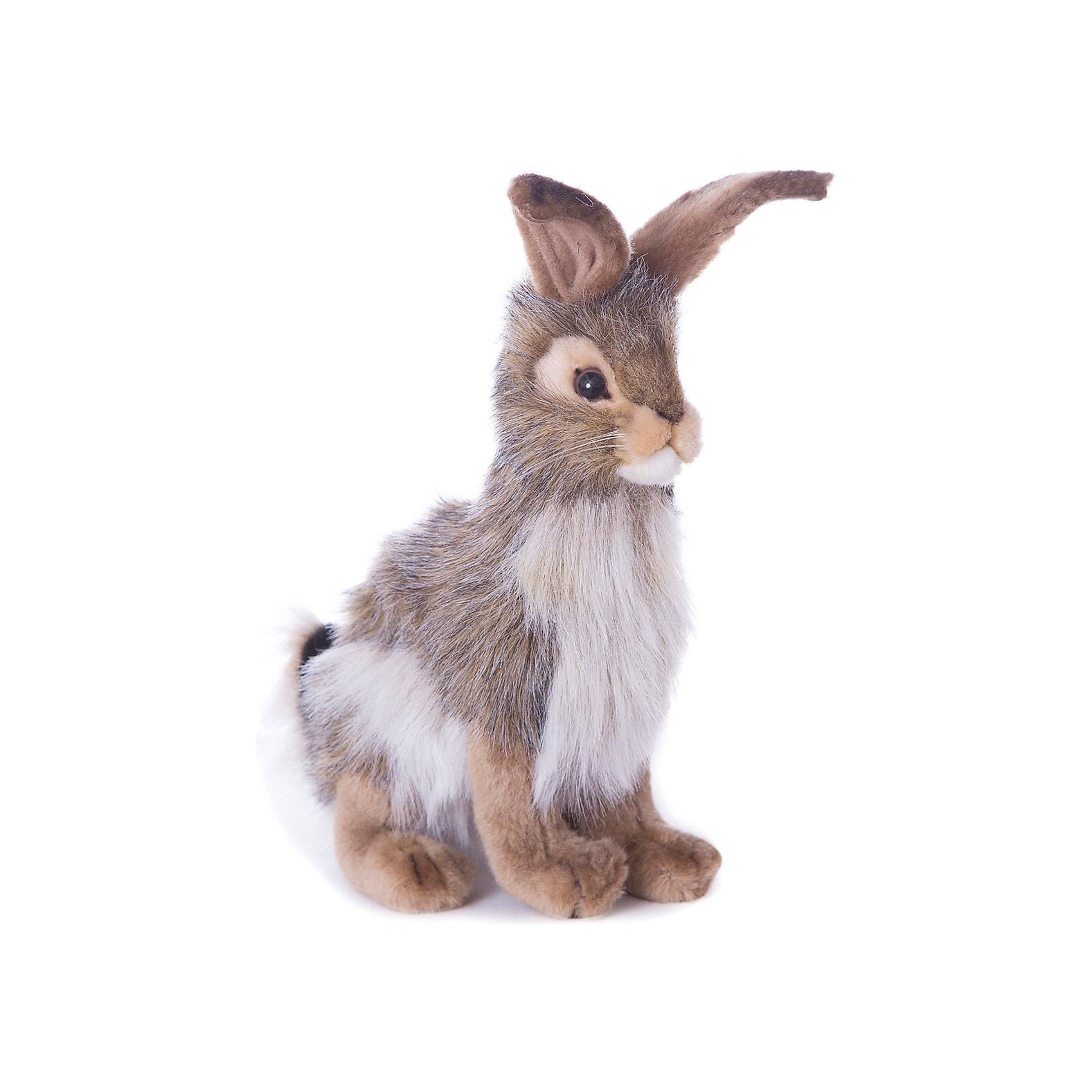 Чернохвостый заяц, 23 смЗайцы и кролики<br>Чернохвостый заяц, 23 см – игрушка от знаменитого бренда Hansa, специализирующегося на выпуске мягких игрушек с высокой степенью натуралистичности. Внешний вид игрушечного зайца полностью соответствует реальному прототипу – чернохвостому (калифорнийскому) зайцу. Он выполнен из искусственного меха с ворсом разной длины: туловище и мордочка – из длинного меха пестрого окраса, короткий мех коричневого цвета – на лапках и ушках. Использованные материалы обладают гипоаллергенными свойствами. Внутри игрушки имеется металлический каркас, позволяющий изменять положение. <br>Игрушка относится к серии Дикие животные. <br>Мягкие игрушки от Hansa подходят для сюжетно-ролевых игр, для обучающих игр, направленных на знакомство с животным миром дикой природы. Кроме того, их можно использовать в качестве интерьерных игрушек. Коллекция из нескольких игрушек позволяет создать свою домашнюю ферму, которая будет радовать вашего ребенка долгое время, так как ручная работа и качественные материалы гарантируют их долговечность и прочность.<br><br>Дополнительная информация:<br><br>- Вид игр: сюжетно-ролевые игры, коллекционирование, интерьерные игрушки<br>- Предназначение: для дома, для детских развивающих центров, для детских садов<br>- Материал: искусственный мех, наполнитель ? полиэфирное волокно<br>- Размер (ДхШхВ): 18*23*12 см<br>- Вес: 280 г<br>- Особенности ухода: сухая чистка при помощи пылесоса или щетки для одежды<br><br>Подробнее:<br><br>• Для детей в возрасте: от 3 лет <br>• Страна производитель: Филиппины<br>• Торговый бренд: Hansa<br><br>Чернохвостого зайца, 23 см можно купить в нашем интернет-магазине.<br><br>Ширина мм: 18<br>Глубина мм: 23<br>Высота мм: 12<br>Вес г: 280<br>Возраст от месяцев: 36<br>Возраст до месяцев: 2147483647<br>Пол: Унисекс<br>Возраст: Детский<br>SKU: 4927164