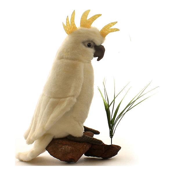 Большой белохохлый какаду, 22 смМягкие игрушки животные<br>Большой белохохлый какаду, 22 см – игрушка от знаменитого бренда Hansa, специализирующегося на выпуске мягких игрушек с высокой степенью натуралистичности. Внешний вид игрушечного какаду полностью соответствует реальному прототипу – попугаю какаду или альба. Он выполнен из искусственного меха молочного цвета с коротким ворсом и хохолком золотистого цвета. Использованные материалы обладают гипоаллергенными свойствами. Внутри игрушки имеется металлический каркас, позволяющий изменять положение. <br>Игрушка относится к серии Лесные птицы. <br>Мягкие игрушки от Hansa подходят для сюжетно-ролевых игр, для обучающих игр, направленных на знакомство с животным миром дикой природы. Кроме того, их можно использовать в качестве интерьерных игрушек. Коллекция из нескольких игрушек позволяет создать свой домашний зоопарк, который будет радовать вашего ребенка долгое время, так как ручная работа и качественные материалы гарантируют их долговечность и прочность.<br><br>Дополнительная информация:<br><br>- Вид игр: сюжетно-ролевые игры, коллекционирование, интерьерные игрушки<br>- Предназначение: для дома, для детских развивающих центров, для детских садов<br>- Материал: искусственный мех, наполнитель ? полиэфирное волокно<br>- Размер (ДхШхВ): 19*22*9 см<br>- Вес: 420 г<br>- Особенности ухода: сухая чистка при помощи пылесоса или щетки для одежды<br><br>Подробнее:<br><br>• Для детей в возрасте: от 3 лет <br>• Страна производитель: Филиппины<br>• Торговый бренд: Hansa<br><br>Большого белохохлого какаду, 22 см можно купить в нашем интернет-магазине.<br><br>Ширина мм: 19<br>Глубина мм: 22<br>Высота мм: 9<br>Вес г: 420<br>Возраст от месяцев: 36<br>Возраст до месяцев: 2147483647<br>Пол: Унисекс<br>Возраст: Детский<br>SKU: 4927167