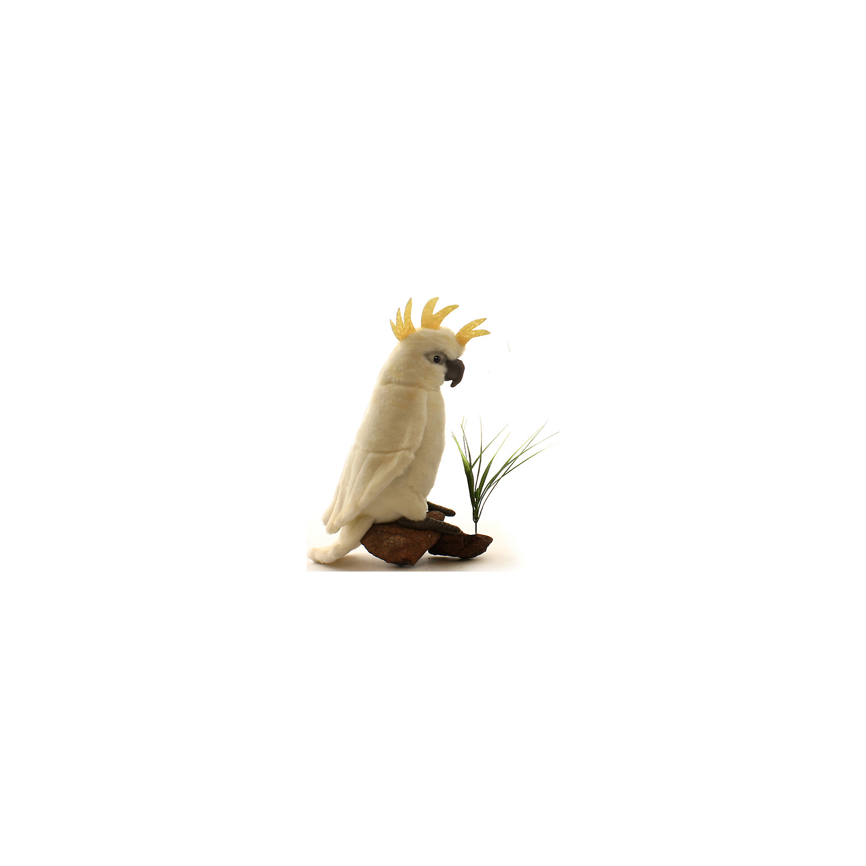 Большой белохохлый какаду, 22 смЗвери и птицы<br>Большой белохохлый какаду, 22 см – игрушка от знаменитого бренда Hansa, специализирующегося на выпуске мягких игрушек с высокой степенью натуралистичности. Внешний вид игрушечного какаду полностью соответствует реальному прототипу – попугаю какаду или альба. Он выполнен из искусственного меха молочного цвета с коротким ворсом и хохолком золотистого цвета. Использованные материалы обладают гипоаллергенными свойствами. Внутри игрушки имеется металлический каркас, позволяющий изменять положение. <br>Игрушка относится к серии Лесные птицы. <br>Мягкие игрушки от Hansa подходят для сюжетно-ролевых игр, для обучающих игр, направленных на знакомство с животным миром дикой природы. Кроме того, их можно использовать в качестве интерьерных игрушек. Коллекция из нескольких игрушек позволяет создать свой домашний зоопарк, который будет радовать вашего ребенка долгое время, так как ручная работа и качественные материалы гарантируют их долговечность и прочность.<br><br>Дополнительная информация:<br><br>- Вид игр: сюжетно-ролевые игры, коллекционирование, интерьерные игрушки<br>- Предназначение: для дома, для детских развивающих центров, для детских садов<br>- Материал: искусственный мех, наполнитель ? полиэфирное волокно<br>- Размер (ДхШхВ): 19*22*9 см<br>- Вес: 420 г<br>- Особенности ухода: сухая чистка при помощи пылесоса или щетки для одежды<br><br>Подробнее:<br><br>• Для детей в возрасте: от 3 лет <br>• Страна производитель: Филиппины<br>• Торговый бренд: Hansa<br><br>Большого белохохлого какаду, 22 см можно купить в нашем интернет-магазине.<br><br>Ширина мм: 19<br>Глубина мм: 22<br>Высота мм: 9<br>Вес г: 420<br>Возраст от месяцев: 36<br>Возраст до месяцев: 2147483647<br>Пол: Унисекс<br>Возраст: Детский<br>SKU: 4927167