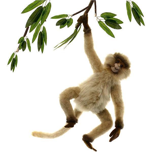 Паукообразная обезьяна, 44 смМягкие игрушки животные<br>Паукообразная обезьянка, 28 см – игрушка от знаменитого бренда Hansa, специализирующегося на выпуске мягких игрушек с высокой степенью натуралистичности. Внешний вид игрушки полностью соответствует своему реальному прототипу – широконосым обезьянам. Она выполнена из искусственного меха с ворсом разной длины. Окрас игрушки полностью повторяет окраску настоящего примата: светло-коричневая шерстка на округлом теле и длинных конечностях. Использованные материалы обладают гипоаллергенными свойствами. Внутри игрушки имеется металлический каркас, позволяющий изменять положение. <br>Игрушка относится к серии Дикие животные. <br>Мягкие игрушки от Hansa подходят для сюжетно-ролевых игр, для обучающих игр, направленных на знакомство с животным миром дикой природы. Кроме того, их можно использовать в качестве интерьерных игрушек. Коллекция из нескольких игрушек позволяет создать свой домашний зоопарк, который будет радовать вашего ребенка долгое время, так как ручная работа и качественные материалы гарантируют их долговечность и прочность.<br><br>Дополнительная информация:<br><br>- Вид игр: сюжетно-ролевые игры, коллекционирование, интерьерные игрушки<br>- Предназначение: для дома, для детских развивающих центров, для детских садов<br>- Материал: искусственный мех, наполнитель ? полиэфирное волокно<br>- Размер (ДхШхВ): 24*27*24 см<br>- Вес: 370 г<br>- Особенности ухода: сухая чистка при помощи пылесоса или щетки для одежды<br><br>Подробнее:<br><br>• Для детей в возрасте: от 3 лет <br>• Страна производитель: Филиппины<br>• Торговый бренд: Hansa<br><br>Паукообразную обезьянку, 28 см  можно купить в нашем интернет-магазине.<br><br>Ширина мм: 24<br>Глубина мм: 27<br>Высота мм: 24<br>Вес г: 370<br>Возраст от месяцев: 36<br>Возраст до месяцев: 2147483647<br>Пол: Унисекс<br>Возраст: Детский<br>SKU: 4927168
