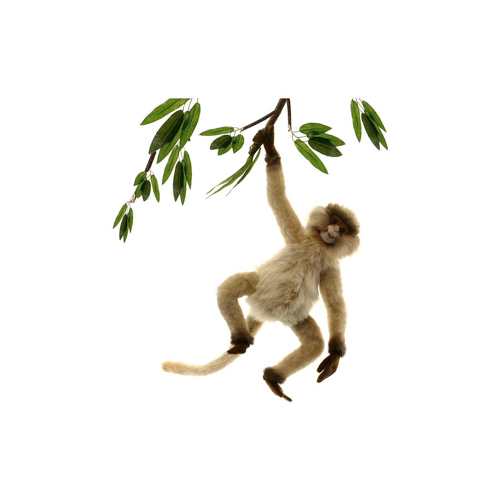 Паукообразная обезьяна, 44 смПаукообразная обезьянка, 28 см – игрушка от знаменитого бренда Hansa, специализирующегося на выпуске мягких игрушек с высокой степенью натуралистичности. Внешний вид игрушки полностью соответствует своему реальному прототипу – широконосым обезьянам. Она выполнена из искусственного меха с ворсом разной длины. Окрас игрушки полностью повторяет окраску настоящего примата: светло-коричневая шерстка на округлом теле и длинных конечностях. Использованные материалы обладают гипоаллергенными свойствами. Внутри игрушки имеется металлический каркас, позволяющий изменять положение. <br>Игрушка относится к серии Дикие животные. <br>Мягкие игрушки от Hansa подходят для сюжетно-ролевых игр, для обучающих игр, направленных на знакомство с животным миром дикой природы. Кроме того, их можно использовать в качестве интерьерных игрушек. Коллекция из нескольких игрушек позволяет создать свой домашний зоопарк, который будет радовать вашего ребенка долгое время, так как ручная работа и качественные материалы гарантируют их долговечность и прочность.<br><br>Дополнительная информация:<br><br>- Вид игр: сюжетно-ролевые игры, коллекционирование, интерьерные игрушки<br>- Предназначение: для дома, для детских развивающих центров, для детских садов<br>- Материал: искусственный мех, наполнитель ? полиэфирное волокно<br>- Размер (ДхШхВ): 24*27*24 см<br>- Вес: 370 г<br>- Особенности ухода: сухая чистка при помощи пылесоса или щетки для одежды<br><br>Подробнее:<br><br>• Для детей в возрасте: от 3 лет <br>• Страна производитель: Филиппины<br>• Торговый бренд: Hansa<br><br>Паукообразную обезьянку, 28 см  можно купить в нашем интернет-магазине.<br><br>Ширина мм: 24<br>Глубина мм: 27<br>Высота мм: 24<br>Вес г: 370<br>Возраст от месяцев: 36<br>Возраст до месяцев: 2147483647<br>Пол: Унисекс<br>Возраст: Детский<br>SKU: 4927168