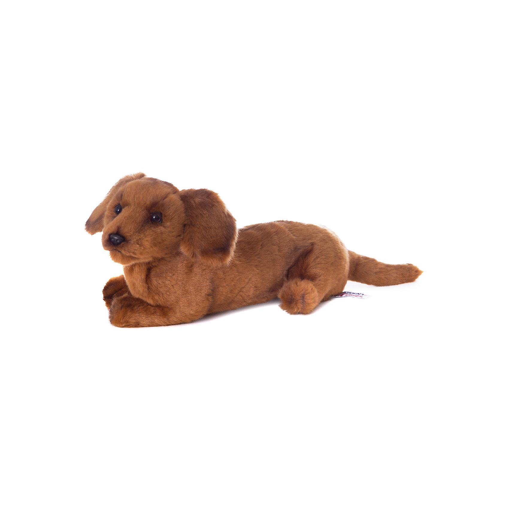 Щенок таксы, 40 смЩенок таксы, 40 см – игрушка от знаменитого бренда Hansa, специализирующегося на выпуске мягких игрушек с высокой степенью натуралистичности. Внешний вид игрушечного щенка полностью соответствует своему реальному прототипу – собаке породы Такса. Он выполнен из искусственного меха с коротким ворсом. Окрас игрушки полностью имитирует окрас, характерный для таксы. Использованные материалы обладают гипоаллергенными свойствами. Внутри игрушки имеется металлический каркас, позволяющий изменять положение. <br>Игрушка относится к серии Домашние животные. <br>Мягкие игрушки от Hansa подходят для сюжетно-ролевых игр, для обучающих игр, направленных на знакомство с миром живой природы. Кроме того, их можно использовать в качестве интерьерных игрушек. Представленные у торгового бренда разнообразие игрушечных собак позволяет собрать свою коллекцию пород, которая будет радовать вашего ребенка долгое время, так как ручная работа и качественные материалы гарантируют их долговечность и прочность.<br><br>Дополнительная информация:<br><br>- Вид игр: сюжетно-ролевые игры, коллекционирование, интерьерные игрушки<br>- Предназначение: для дома, для детских развивающих центров, для детских садов<br>- Материал: искусственный мех, наполнитель ? полиэфирное волокно<br>- Размер (ДхШхВ): 13*16*40 см<br>- Вес: 640 г<br>- Особенности ухода: сухая чистка при помощи пылесоса или щетки для одежды<br><br>Подробнее:<br><br>• Для детей в возрасте: от 3 лет <br>• Страна производитель: Филиппины<br>• Торговый бренд: Hansa<br><br>Щенка таксы, 40 см можно купить в нашем интернет-магазине.<br><br>Ширина мм: 13<br>Глубина мм: 16<br>Высота мм: 40<br>Вес г: 640<br>Возраст от месяцев: 36<br>Возраст до месяцев: 2147483647<br>Пол: Унисекс<br>Возраст: Детский<br>SKU: 4927169