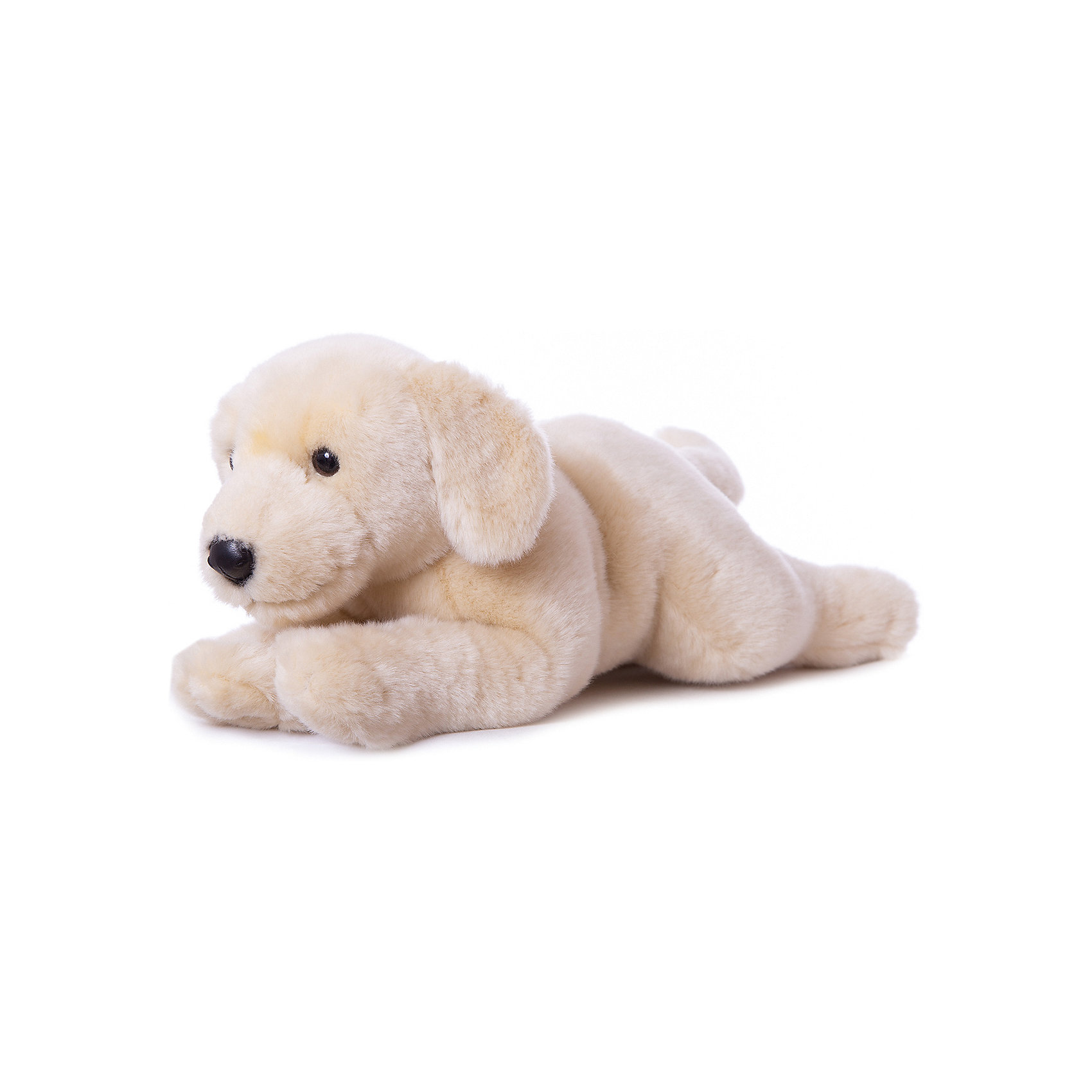 Бежевый лабрадор, 45 смКошки и собаки<br>Бежевый лабрадор, 45 см – игрушка от знаменитого бренда Hansa, специализирующегося на выпуске мягких игрушек с высокой степенью натуралистичности. Внешний вид игрушечной собаки полностью соответствует породе реального прототипа. Игрушка выполнена в бежевом цвете из меха с ворсом средней длины, обладает гипоаллергенными свойствами. Внутри имеется металлический каркас, который позволяет изменять положение. Игрушка относится к серии Домашние животные. <br>Мягкие игрушки от Hansa подходят для сюжетно-ролевых игр или для обучающих игр. Кроме того, их можно использовать в качестве интерьерных игрушек. Игрушки от Hansa будут радовать вашего ребенка долгое время, так как ручная работа и качественные материалы гарантируют их долговечность и прочность.<br><br>Дополнительная информация:<br><br>- Вид игр: сюжетно-ролевые игры, коллекционирование, интерьерные игрушки<br>- Предназначение: для дома, для детских развивающих центров, для детских садов<br>- Материал: искусственный мех, наполнитель ? полиэфирное волокно<br>- Размер (ДхШхВ): 16*18*42 см<br>- Вес: 4 кг 515 г<br>- Особенности ухода: сухая чистка при помощи пылесоса или щетки для одежды<br><br>Подробнее:<br><br>• Для детей в возрасте: от 3 лет <br>• Страна производитель: Филиппины<br>• Торговый бренд: Hansa<br><br>Бежевого лабрадора, 45 см можно купить в нашем интернет-магазине.<br><br>Ширина мм: 16<br>Глубина мм: 18<br>Высота мм: 42<br>Вес г: 4515<br>Возраст от месяцев: 36<br>Возраст до месяцев: 2147483647<br>Пол: Унисекс<br>Возраст: Детский<br>SKU: 4927171