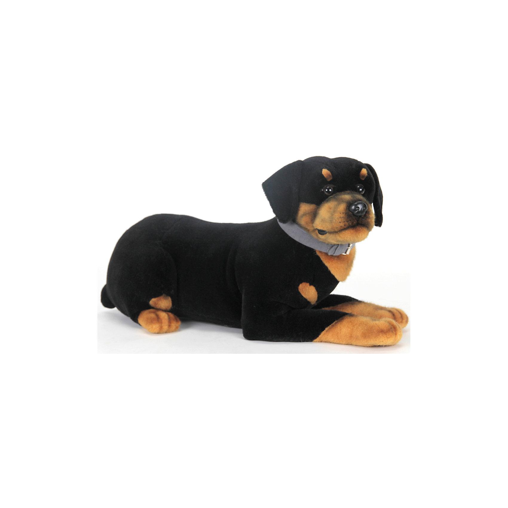 Щенок ротвеллера, 52 смКошки и собаки<br>Щенок ротвеллера, 52 см – игрушка от знаменитого бренда Hansa, специализирующегося на выпуске мягких игрушек с высокой степенью натуралистичности. Внешний вид игрушечного щенка полностью соответствует своему реальному прототипу – собаке породы Ротвеллер. Он выполнен из искусственного меха с коротким ворсом. Окрас игрушки полностью имитирует окрас, характерный для ротвеллера: сочетание черного и коричневого цветов. Использованные материалы обладают гипоаллергенными свойствами. Внутри игрушки имеется металлический каркас, позволяющий изменять положение. <br>Игрушка относится к серии Домашние животные. <br>Мягкие игрушки от Hansa подходят для сюжетно-ролевых игр, для обучающих игр, направленных на знакомство с миром живой природы. Кроме того, их можно использовать в качестве интерьерных игрушек. Представленные у торгового бренда разнообразие игрушечных собак позволяет собрать свою коллекцию пород, которая будет радовать вашего ребенка долгое время, так как ручная работа и качественные материалы гарантируют их долговечность и прочность.<br><br>Дополнительная информация:<br><br>- Вид игр: сюжетно-ролевые игры, коллекционирование, интерьерные игрушки<br>- Предназначение: для дома, для детских развивающих центров, для детских садов<br>- Материал: искусственный мех, наполнитель ? полиэфирное волокно<br>- Размер (ДхШхВ): 30*32*54 см<br>- Вес: 800 г<br>- Особенности ухода: сухая чистка при помощи пылесоса или щетки для одежды<br><br>Подробнее:<br><br>• Для детей в возрасте: от 3 лет <br>• Страна производитель: Филиппины<br>• Торговый бренд: Hansa<br><br>Щенка ротвеллера, 52 см можно купить в нашем интернет-магазине.<br><br>Ширина мм: 30<br>Глубина мм: 32<br>Высота мм: 54<br>Вес г: 800<br>Возраст от месяцев: 36<br>Возраст до месяцев: 2147483647<br>Пол: Унисекс<br>Возраст: Детский<br>SKU: 4927174