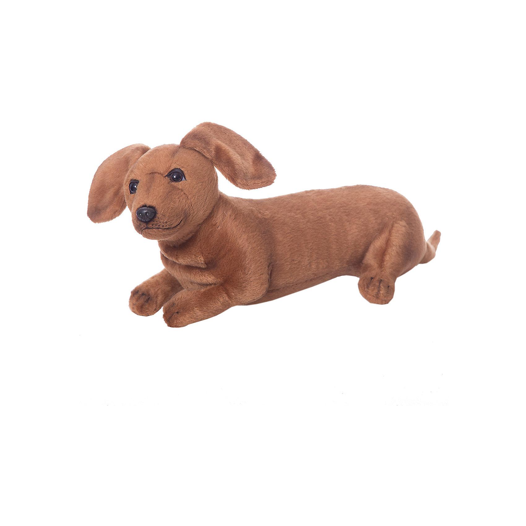 Щенок таксы, 40 смЩенок таксы, 40 см – игрушка от знаменитого бренда Hansa, специализирующегося на выпуске мягких игрушек с высокой степенью натуралистичности. Внешний вид игрушечного щенка полностью соответствует своему реальному прототипу – собаке породы Такса. Он выполнен из искусственного меха темно-коричневого цвета с коротким ворсом. Использованные материалы обладают гипоаллергенными свойствами. Внутри игрушки имеется металлический каркас, позволяющий изменять положение. <br>Игрушка относится к серии Домашние животные. <br>Мягкие игрушки от Hansa подходят для сюжетно-ролевых игр, для обучающих игр, направленных на знакомство с миром живой природы. Кроме того, их можно использовать в качестве интерьерных игрушек. Представленные у торгового бренда разнообразие игрушечных собак позволяет собрать свою коллекцию пород, которая будет радовать вашего ребенка долгое время, так как ручная работа и качественные материалы гарантируют их долговечность и прочность.<br><br>Дополнительная информация:<br><br>- Вид игр: сюжетно-ролевые игры, коллекционирование, интерьерные игрушки<br>- Предназначение: для дома, для детских развивающих центров, для детских садов<br>- Материал: искусственный мех, наполнитель ? полиэфирное волокно<br>- Размер (ДхШхВ): 40*13*16 см<br>- Вес: 320 г<br>- Особенности ухода: сухая чистка при помощи пылесоса или щетки для одежды<br><br>Подробнее:<br><br>• Для детей в возрасте: от 3 лет <br>• Страна производитель: Филиппины<br>• Торговый бренд: Hansa<br><br>Щенка таксы, 40 см можно купить в нашем интернет-магазине.<br><br>Ширина мм: 40<br>Глубина мм: 13<br>Высота мм: 16<br>Вес г: 320<br>Возраст от месяцев: 36<br>Возраст до месяцев: 2147483647<br>Пол: Унисекс<br>Возраст: Детский<br>SKU: 4927175