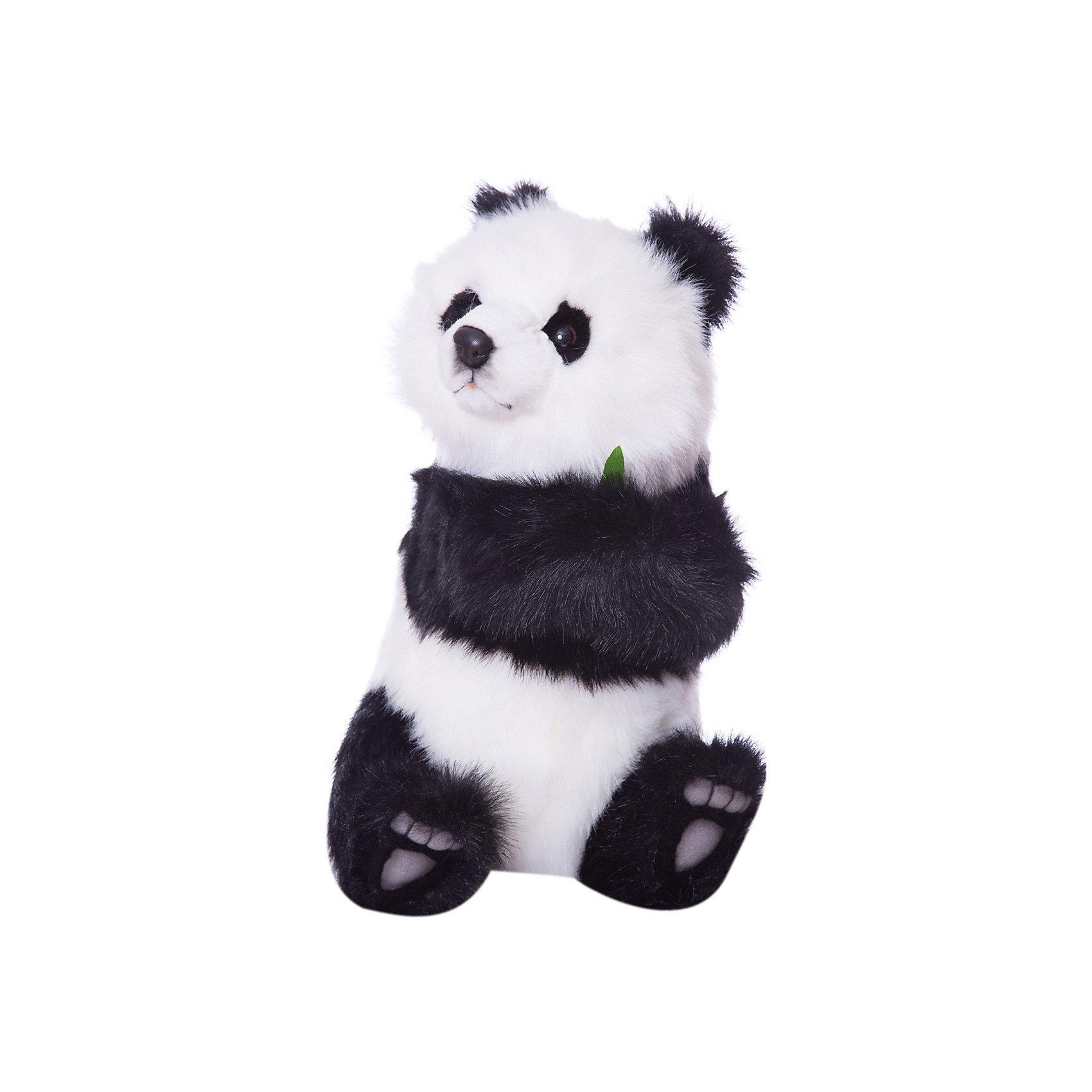 Детеныш панды, сидящий, 41 смМягкие игрушки животные<br>Детеныш панды,  41 см – игрушка от знаменитого бренда Hansa, специализирующегося на выпуске мягких игрушек с высокой степенью натуралистичности. Внешний вид игрушечной панды полностью соответствует реальному прототипу. Она выполнена из искусственного меха черного и белого цветов с длинным ворсом. В лапках детеныш панды держит веточку любимого лакомства – бамбуковые веточки. Использованные материалы обладают гипоаллергенными свойствами. Внутри игрушки имеется металлический каркас, позволяющий изменять положение. <br>Игрушка относится к серии Дикие животные. <br>Мягкие игрушки от Hansa подходят для сюжетно-ролевых игр, для обучающих игр, направленных на знакомство с животным миром дикой природы. Кроме того, их можно использовать в качестве интерьерных игрушек. Коллекция из нескольких игрушек позволяет создать свой домашний зоопарк, который будет радовать вашего ребенка долгое время, так как ручная работа и качественные материалы гарантируют их долговечность и прочность.<br><br>Дополнительная информация:<br><br>- Вид игр: сюжетно-ролевые игры, коллекционирование, интерьерные игрушки<br>- Предназначение: для дома, для детских развивающих центров, для детских садов<br>- Материал: искусственный мех, наполнитель ? полиэфирное волокно<br>- Размер (ДхШхВ): 41*27*30 см<br>- Вес: 1 кг 270 г<br>- Особенности ухода: сухая чистка при помощи пылесоса или щетки для одежды<br><br>Подробнее:<br><br>• Для детей в возрасте: от 3 лет <br>• Страна производитель: Филиппины<br>• Торговый бренд: Hansa<br><br>Детеныша панды,  41 см можно купить в нашем интернет-магазине.<br><br>Ширина мм: 41<br>Глубина мм: 27<br>Высота мм: 30<br>Вес г: 1270<br>Возраст от месяцев: 36<br>Возраст до месяцев: 2147483647<br>Пол: Унисекс<br>Возраст: Детский<br>SKU: 4927181