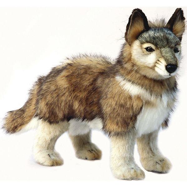 Волченок серый, стоящий, 44 смМягкие игрушки животные<br>Волчонок серый, стоящий, 44 см – игрушка от знаменитого бренда Hansa, специализирующегося на выпуске мягких игрушек с высокой степенью натуралистичности. Внешний вид игрушечного волчонка полностью соответствует реальному прототипу. Он выполнен из искусственного меха с ворсом средней длины; лапки – из короткого меха. Окрас игрушки с точностью повторяет облик настоящего волка – коричневые, серые и белые оттенки. Использованные материалы обладают гипоаллергенными свойствами. Внутри игрушки имеется металлический каркас, позволяющий изменять положение. <br>Игрушка относится к серии Дикие животные. <br>Мягкие игрушки от Hansa подходят для сюжетно-ролевых игр, для обучающих игр, направленных на знакомство с животным миром дикой природы. Кроме того, их можно использовать в качестве интерьерных игрушек. Коллекция из нескольких игрушек позволяет создать свой домашний зоопарк, который будет радовать вашего ребенка долгое время, так как ручная работа и качественные материалы гарантируют их долговечность и прочность.<br><br>Дополнительная информация:<br><br>- Вид игр: сюжетно-ролевые игры, коллекционирование, интерьерные игрушки<br>- Предназначение: для дома, для детских развивающих центров, для детских садов<br>- Материал: искусственный мех, наполнитель ? полиэфирное волокно<br>- Размер (ДхШхВ): 35*16*44 см<br>- Вес: 760 г<br>- Особенности ухода: сухая чистка при помощи пылесоса или щетки для одежды<br><br>Подробнее:<br><br>• Для детей в возрасте: от 3 лет <br>• Страна производитель: Филиппины<br>• Торговый бренд: Hansa<br><br>Волчонка серого, стоящего, 44 см можно купить в нашем интернет-магазине.<br>Ширина мм: 35; Глубина мм: 16; Высота мм: 44; Вес г: 760; Возраст от месяцев: 36; Возраст до месяцев: 2147483647; Пол: Унисекс; Возраст: Детский; SKU: 4927187;