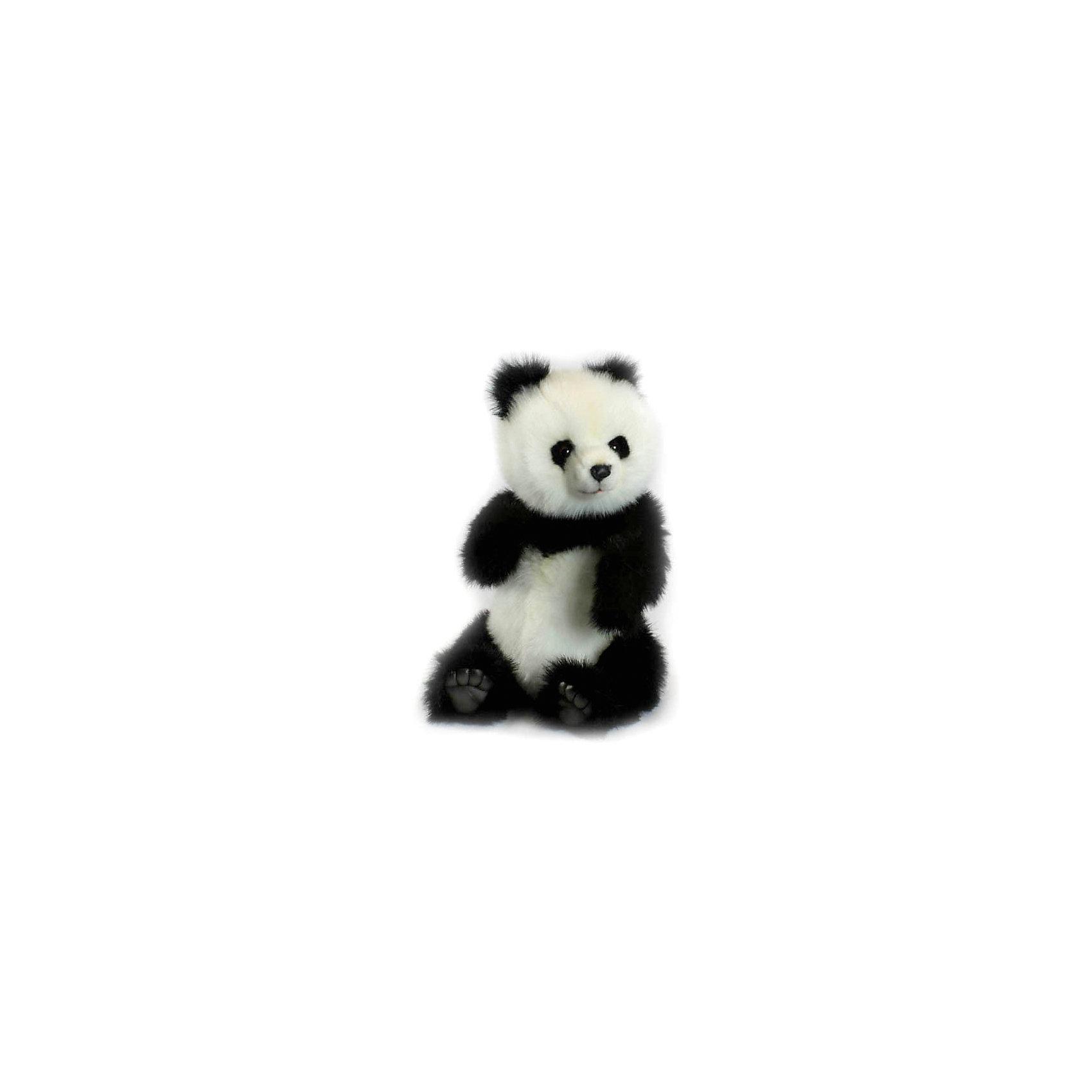 Панда, 38 смМягкие игрушки животные<br>Панда, 38 см – игрушка от знаменитого бренда Hansa, специализирующегося на выпуске мягких игрушек с высокой степенью натуралистичности. Внешний вид игрушки полностью соответствует своему реальному прототипу – панде (бамбуковому медведю). Она выполнена из искусственного меха с длинным ворсом. Окрас игрушки полностью повторяет окрас бамбукового медведя. Использованные материалы обладают гипоаллергенными свойствами. Внутри игрушки имеется металлический каркас, позволяющий изменять положение. <br>Игрушка относится к серии Дикие животные. <br>Мягкие игрушки от Hansa подходят для сюжетно-ролевых игр, для обучающих игр, направленных на знакомство с животным миром дикой природы. Кроме того, их можно использовать в качестве интерьерных игрушек. Коллекция из нескольких игрушек позволяет создать свой домашний зоопарк, который будет радовать вашего ребенка долгое время, так как ручная работа и качественные материалы гарантируют их долговечность и прочность.<br><br>Дополнительная информация:<br><br>- Вид игр: сюжетно-ролевые игры, коллекционирование, интерьерные игрушки<br>- Предназначение: для дома, для детских развивающих центров, для детских садов<br>- Материал: искусственный мех, наполнитель ? полиэфирное волокно<br>- Размер (ДхШхВ): 30*38*25 см<br>- Вес: 1 кг 300 г<br>- Особенности ухода: сухая чистка при помощи пылесоса или щетки для одежды<br><br>Подробнее:<br><br>• Для детей в возрасте: от 3 лет <br>• Страна производитель: Филиппины<br>• Торговый бренд: Hansa<br><br>Панду, 38 см можно купить в нашем интернет-магазине.<br><br>Ширина мм: 30<br>Глубина мм: 38<br>Высота мм: 25<br>Вес г: 1300<br>Возраст от месяцев: 36<br>Возраст до месяцев: 2147483647<br>Пол: Унисекс<br>Возраст: Детский<br>SKU: 4927189