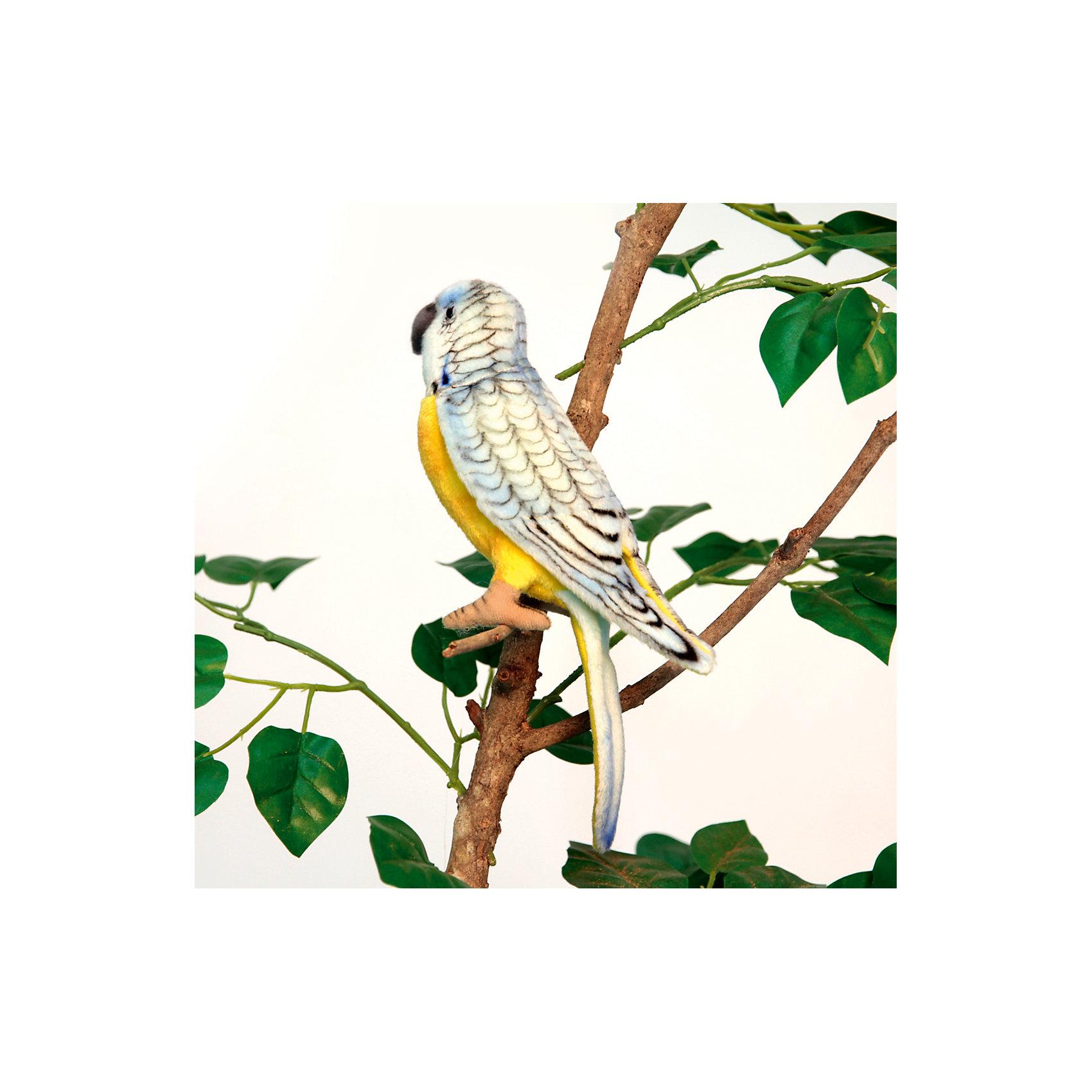 Попугай волнистый голубой, 15 смМягкие игрушки животные<br>Попугай волнистый голубой, 15 см – игрушка от знаменитого бренда Hansa, специализирующегося на выпуске мягких игрушек с высокой степенью натуралистичности. Внешний вид игрушечного попугая полностью соответствует реальному прототипу – семейству волнистых одомашненных попугаев. Он выполнен из искусственного мехас коротким ворсом. Окрас игрушки полностью имитирует яркое оперение птицы. Использованные материалы обладают гипоаллергенными свойствами. Внутри игрушки имеется металлический каркас, позволяющий изменять положение. <br>Игрушка относится к серии Домашние животные. <br>Мягкие игрушки от Hansa подходят для сюжетно-ролевых игр, для обучающих игр, направленных на знакомство с животным миром дикой природы. Кроме того, их можно использовать в качестве интерьерных игрушек. Коллекция из нескольких игрушек позволяет создать свой домашний зоопарк, который будет радовать вашего ребенка долгое время, так как ручная работа и качественные материалы гарантируют их долговечность и прочность.<br><br>Дополнительная информация:<br><br>- Вид игр: сюжетно-ролевые игры, коллекционирование, интерьерные игрушки<br>- Предназначение: для дома, для детских развивающих центров, для детских садов<br>- Материал: искусственный мех, наполнитель ? полиэфирное волокно<br>- Размер (ДхШхВ): 7*15*5 см<br>- Вес: 210 г<br>- Особенности ухода: сухая чистка при помощи пылесоса или щетки для одежды<br><br>Подробнее:<br><br>• Для детей в возрасте: от 3 лет <br>• Страна производитель: Филиппины<br>• Торговый бренд: Hansa<br><br>Попугай волнистый голубой, 15 см можно купить в нашем интернет-магазине.<br><br>Ширина мм: 7<br>Глубина мм: 15<br>Высота мм: 5<br>Вес г: 210<br>Возраст от месяцев: 36<br>Возраст до месяцев: 2147483647<br>Пол: Унисекс<br>Возраст: Детский<br>SKU: 4927192