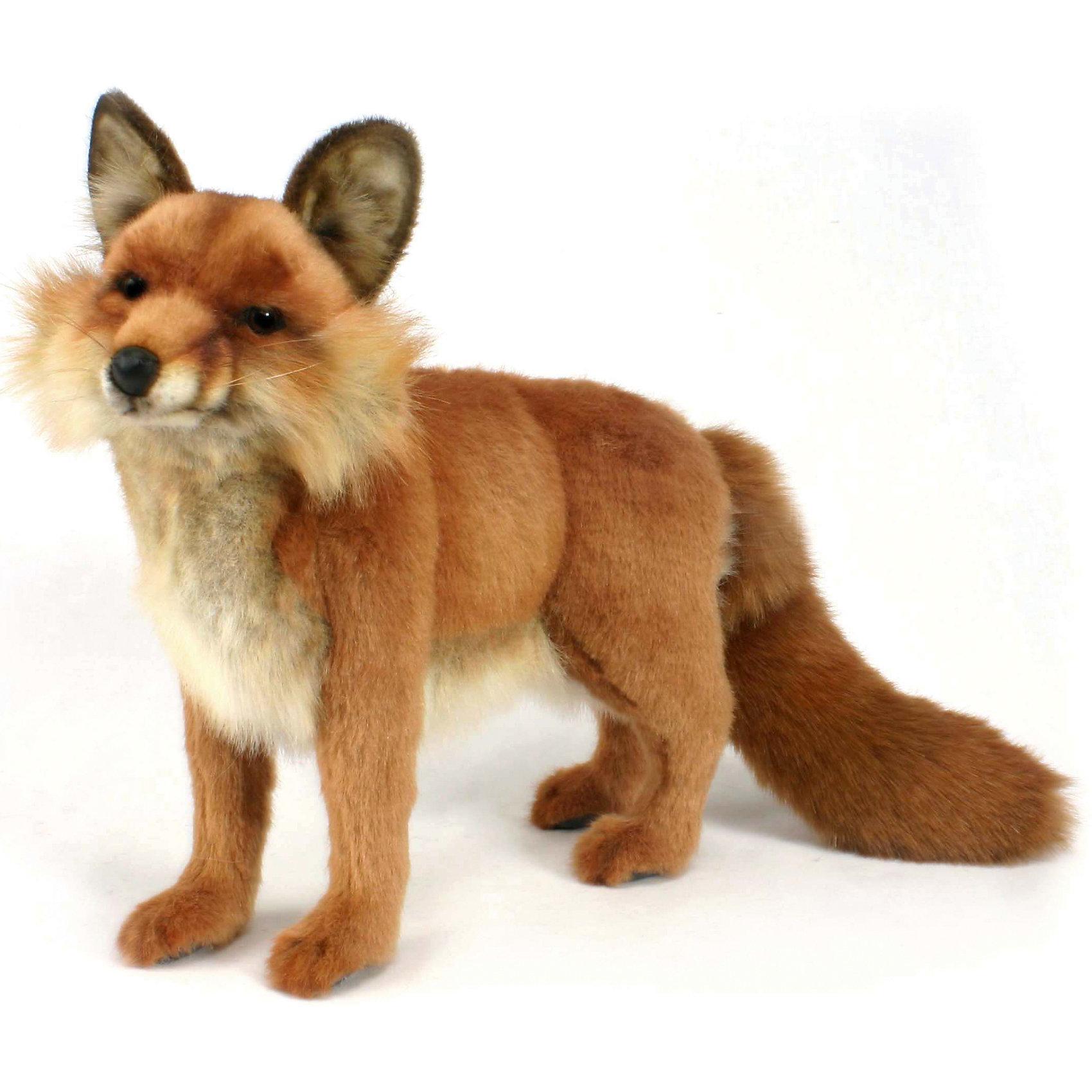 Рыжая лисица, 40смЗвери и птицы<br>Рыжая лиса, 40 см – игрушка от знаменитого бренда Hansa, специализирующегося на выпуске мягких игрушек с высокой степенью натуралистичности. Внешний игрушки полностью соответствует реальному прототипу – лисице обыкновенной. Игрушка выполнена из ярко-коричневого меха с ворсом разной длины, который обладает гипоаллергенными свойствами. У игрушечной лисы пушистая мордочка и хвост. Внутри имеется металлический каркас, который позволяет изменять положение. Игрушка относится к серии Дикие животные. <br>Мягкие игрушки от Hansa подходят для сюжетно-ролевых игр или для обучающих игр. Кроме того, их можно использовать в качестве интерьерных игрушек. Игрушки от Hansa будут радовать вашего ребенка долгое время, так как ручная работа и качественные материалы гарантируют их долговечность и прочность.<br><br>Дополнительная информация:<br><br>- Вид игр: сюжетно-ролевые игры, коллекционирование, интерьерные игрушки<br>- Предназначение: для дома, для детских развивающих центров, для детских садов<br>- Материал: искусственный мех, наполнитель ? полиэфирное волокно<br>- Размер (ДхШхВ): 40*36*14 см<br>- Вес: 1 кг 395 г<br>- Особенности ухода: сухая чистка при помощи пылесоса или щетки для одежды<br><br>Подробнее:<br><br>• Для детей в возрасте: от 3 лет <br>• Страна производитель: Филиппины<br>• Торговый бренд: Hansa<br><br>Рыжую лису, 40 см можно купить в нашем интернет-магазине.<br><br>Ширина мм: 40<br>Глубина мм: 36<br>Высота мм: 14<br>Вес г: 1395<br>Возраст от месяцев: 36<br>Возраст до месяцев: 2147483647<br>Пол: Унисекс<br>Возраст: Детский<br>SKU: 4927194